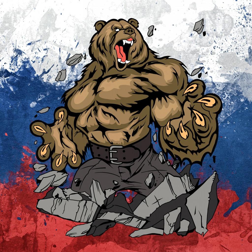 медведь россия фото