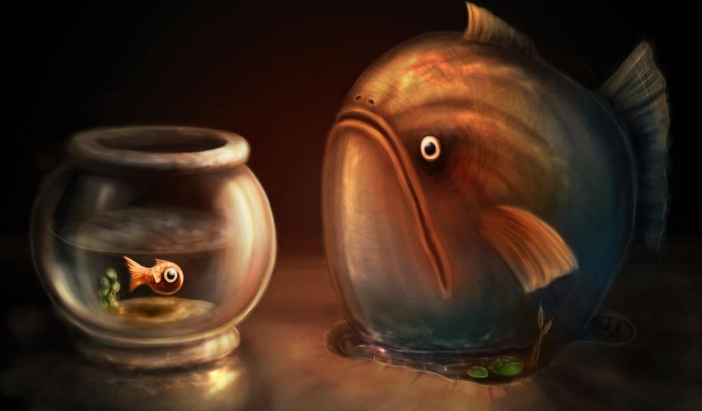 Картинки рыба прикольная