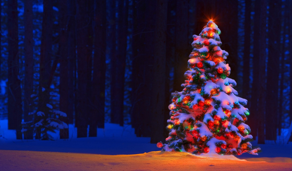 ель огни снег  № 3330328 без смс