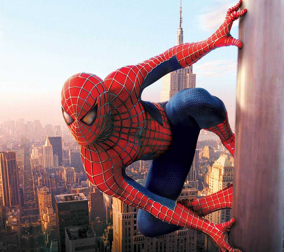 розария фото про человека паука ответ хочу пожелать