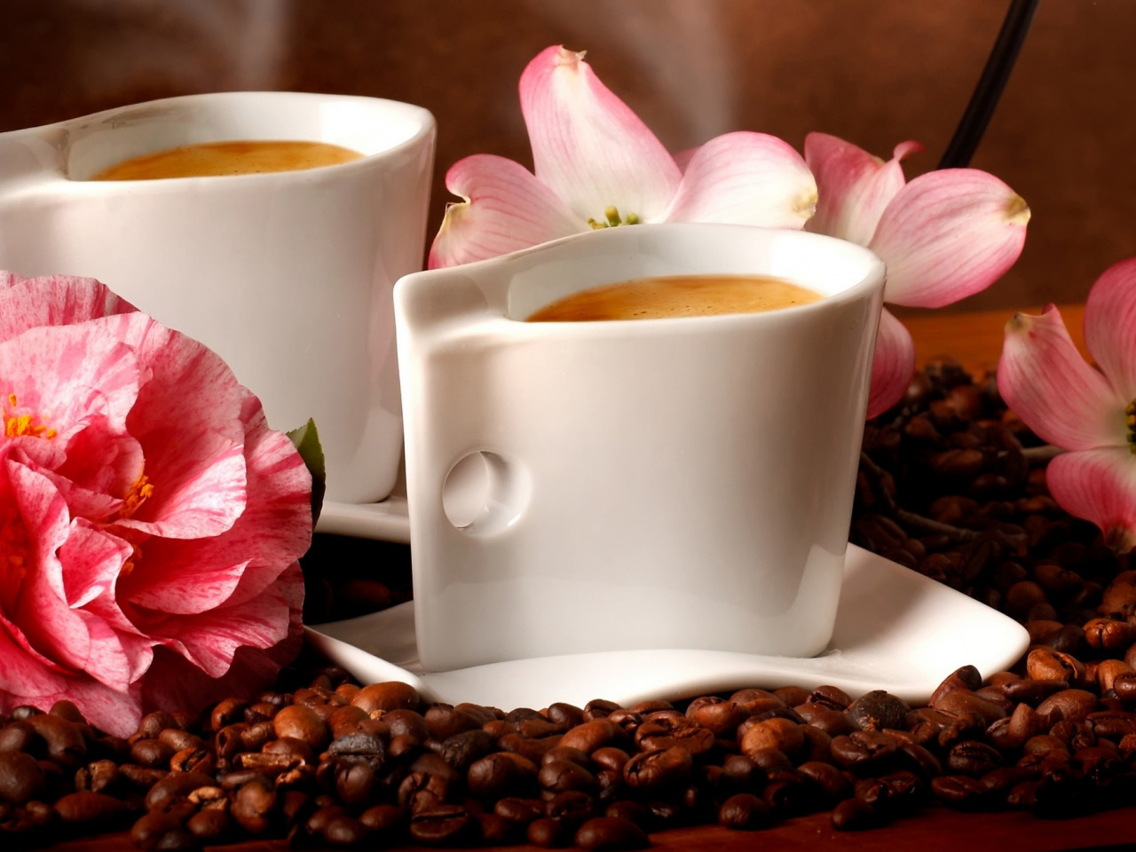 Утром цветы
