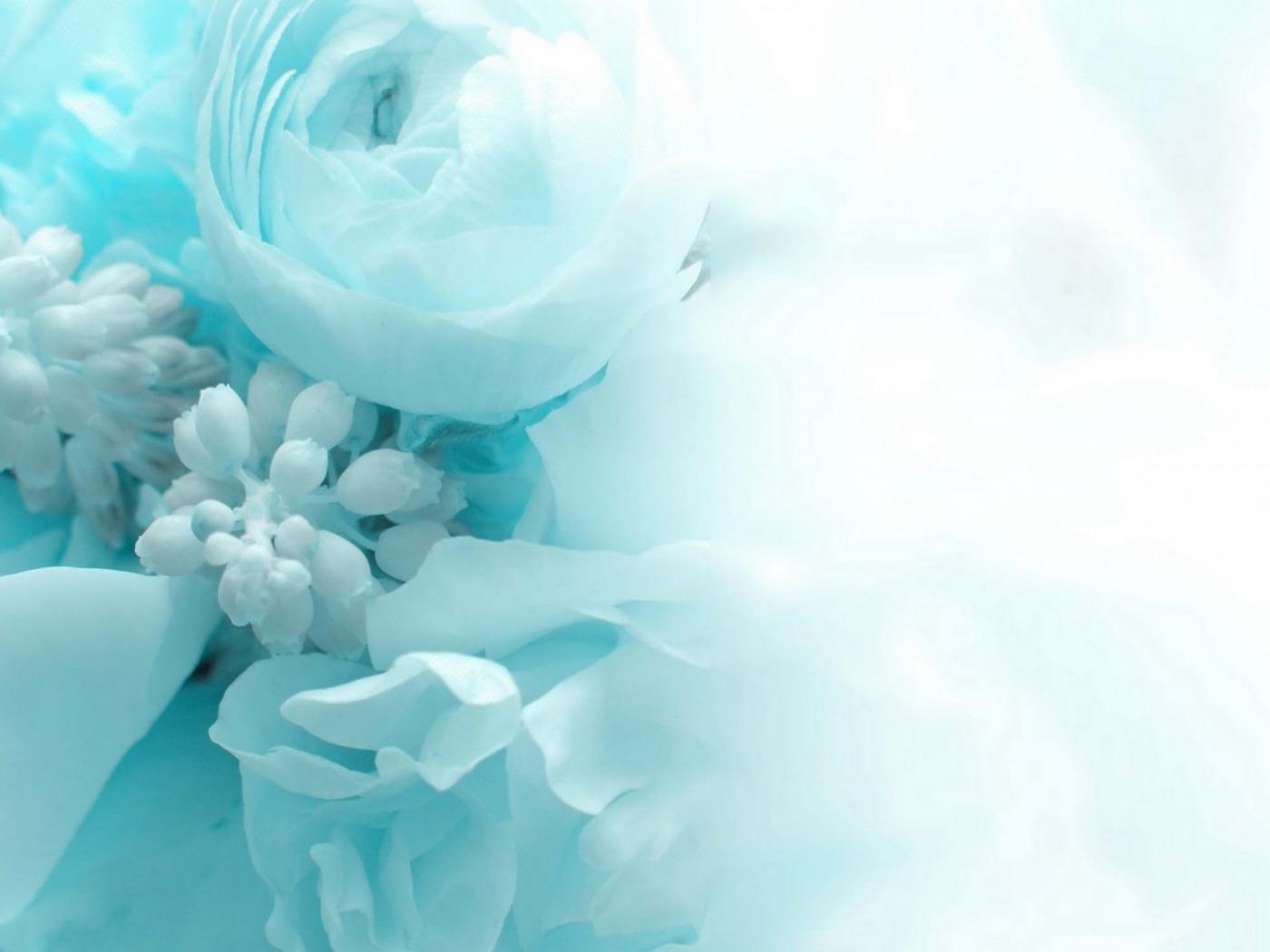 картинки в нежно бирюзовом цвете знаменитая