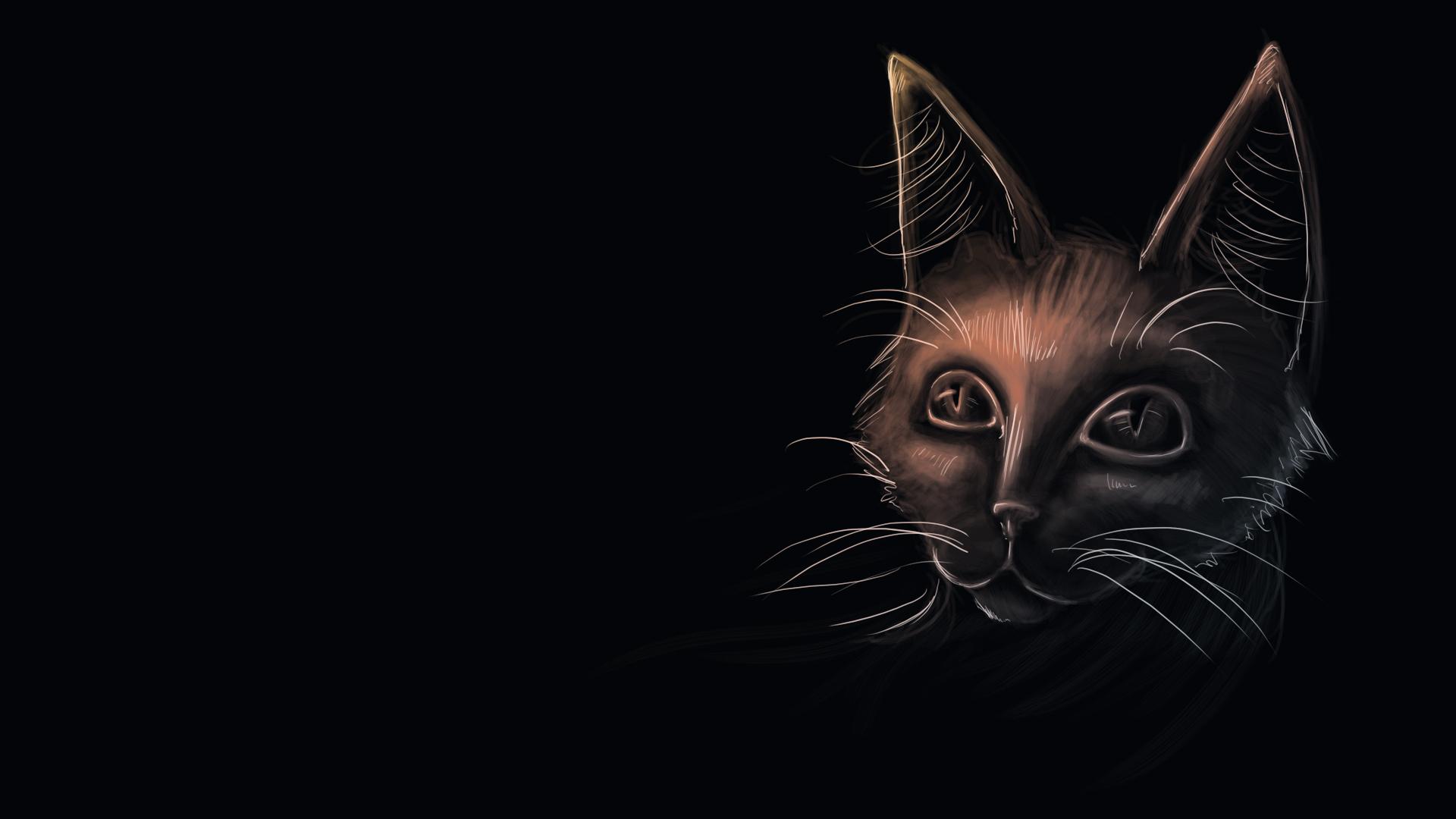 Скачать обои кошка, чёрный фон, взгляд, раздел рендеринг в р.
