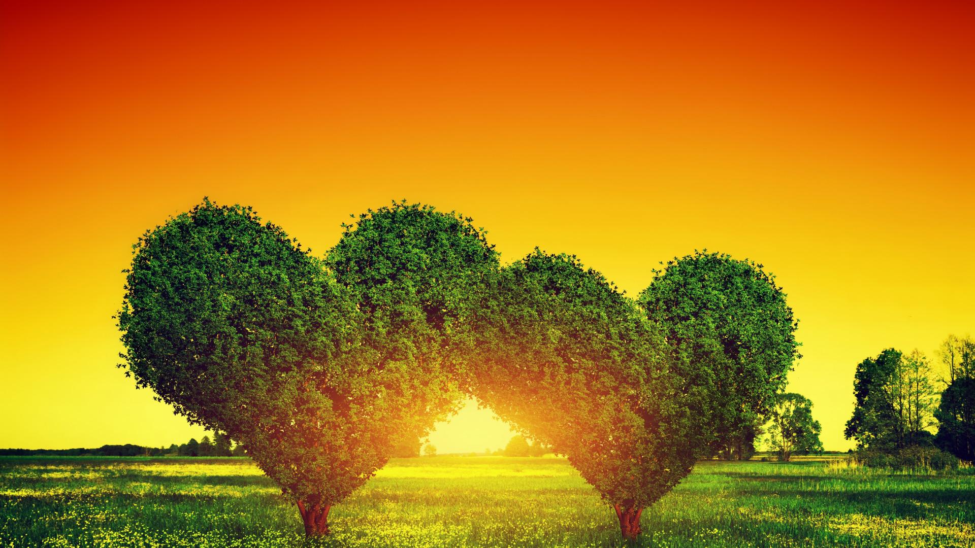 Любовь природы картинки для