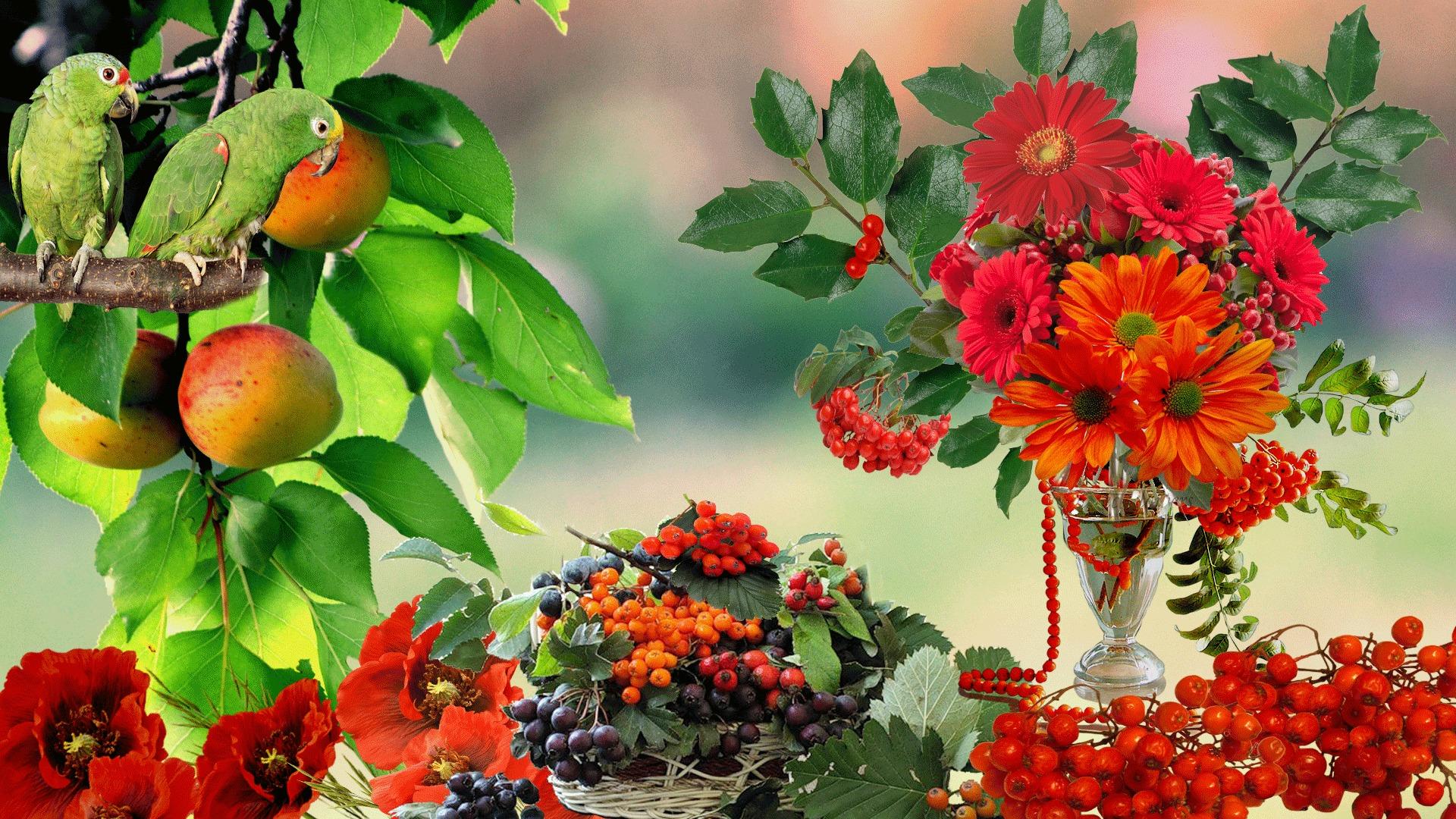 Открытки с красивой осенью для настроения, для мамы картинка