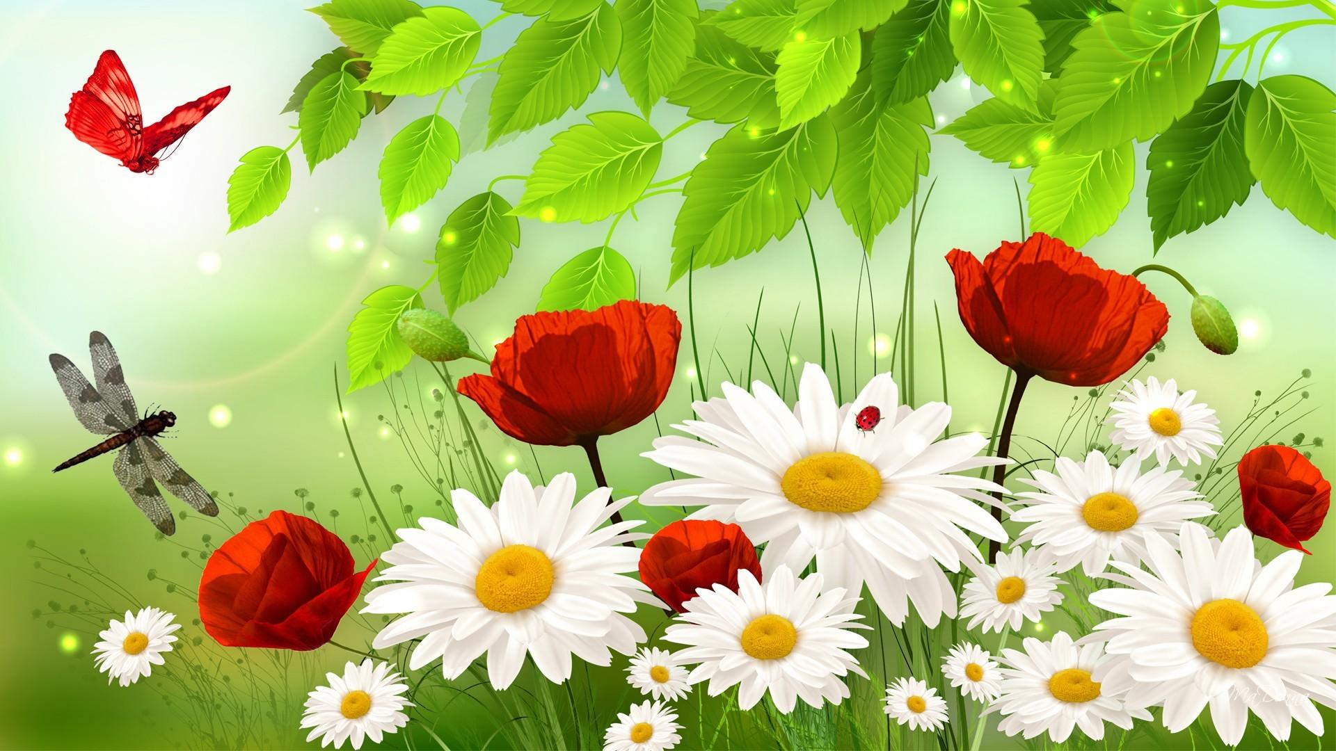 дробилка обои на рабочий стол лето ромашки и розы тебе понравилось это
