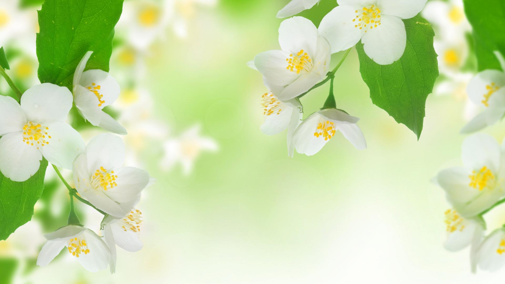 Картинки весна для открыток