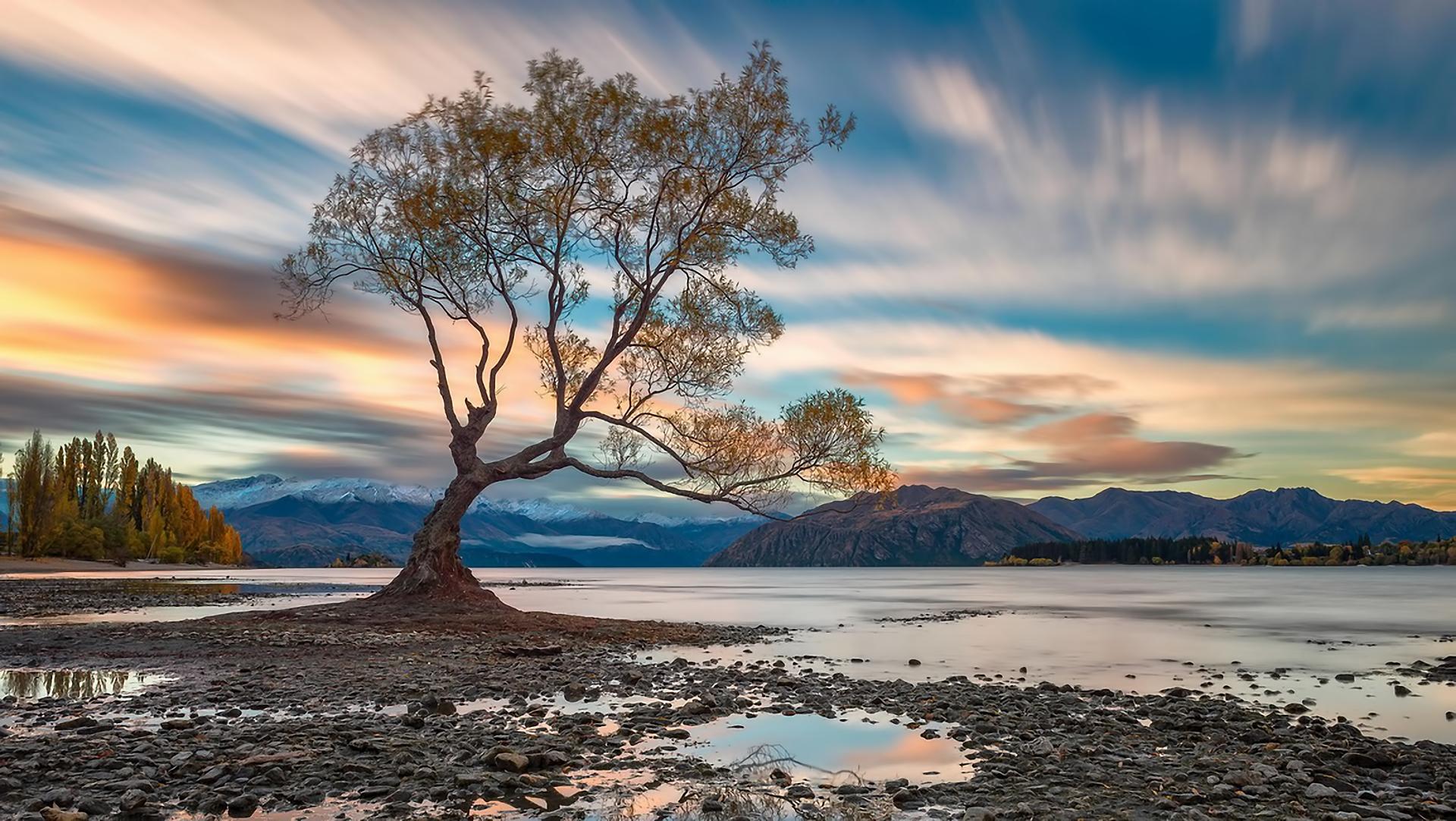 деревья небо озеро  № 3165849  скачать