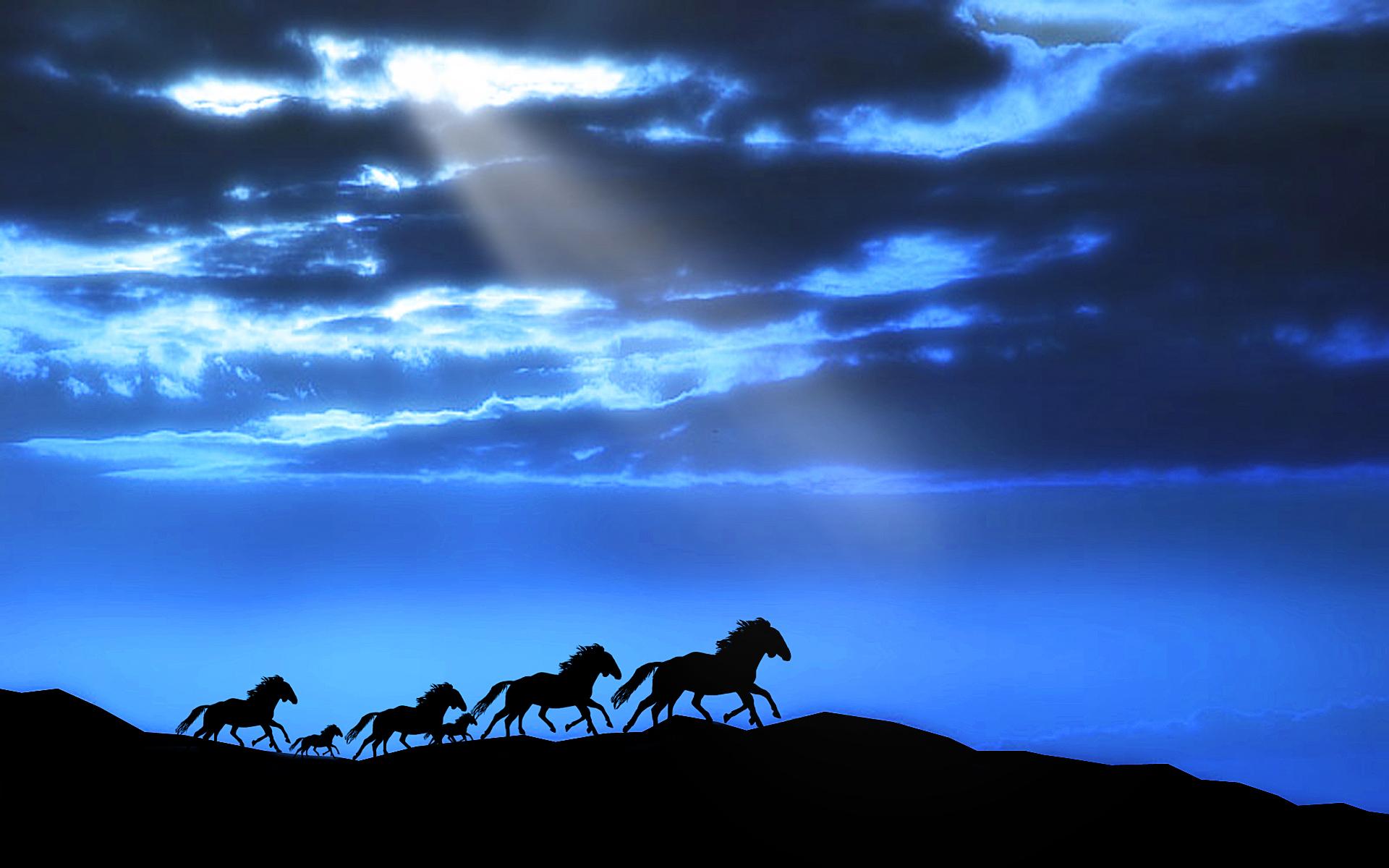 лошади тени ночь  № 359582  скачать