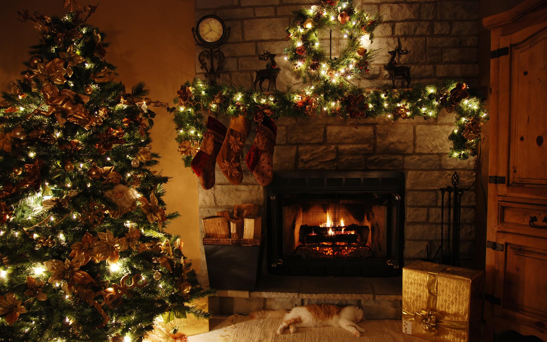 картинки с елкой и камином в доме фото выглядит аллергия руках