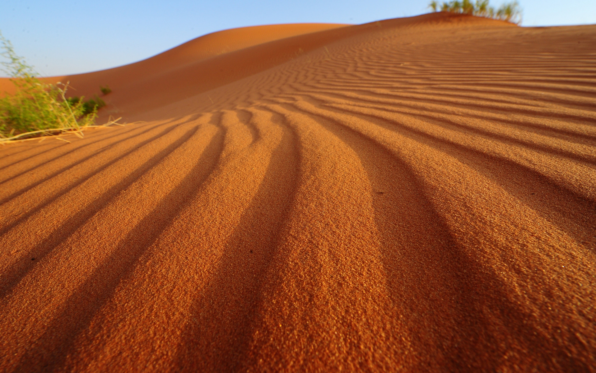 барханы пустыня дюны  № 1291847 бесплатно
