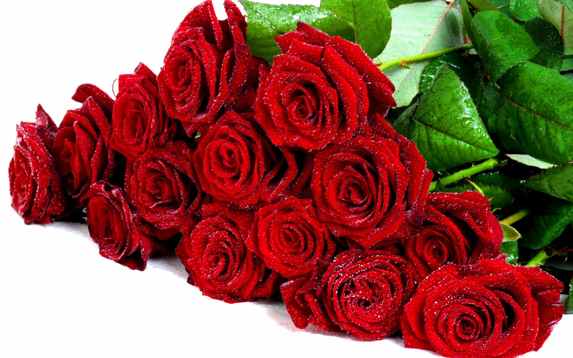Открытки с цветами розами
