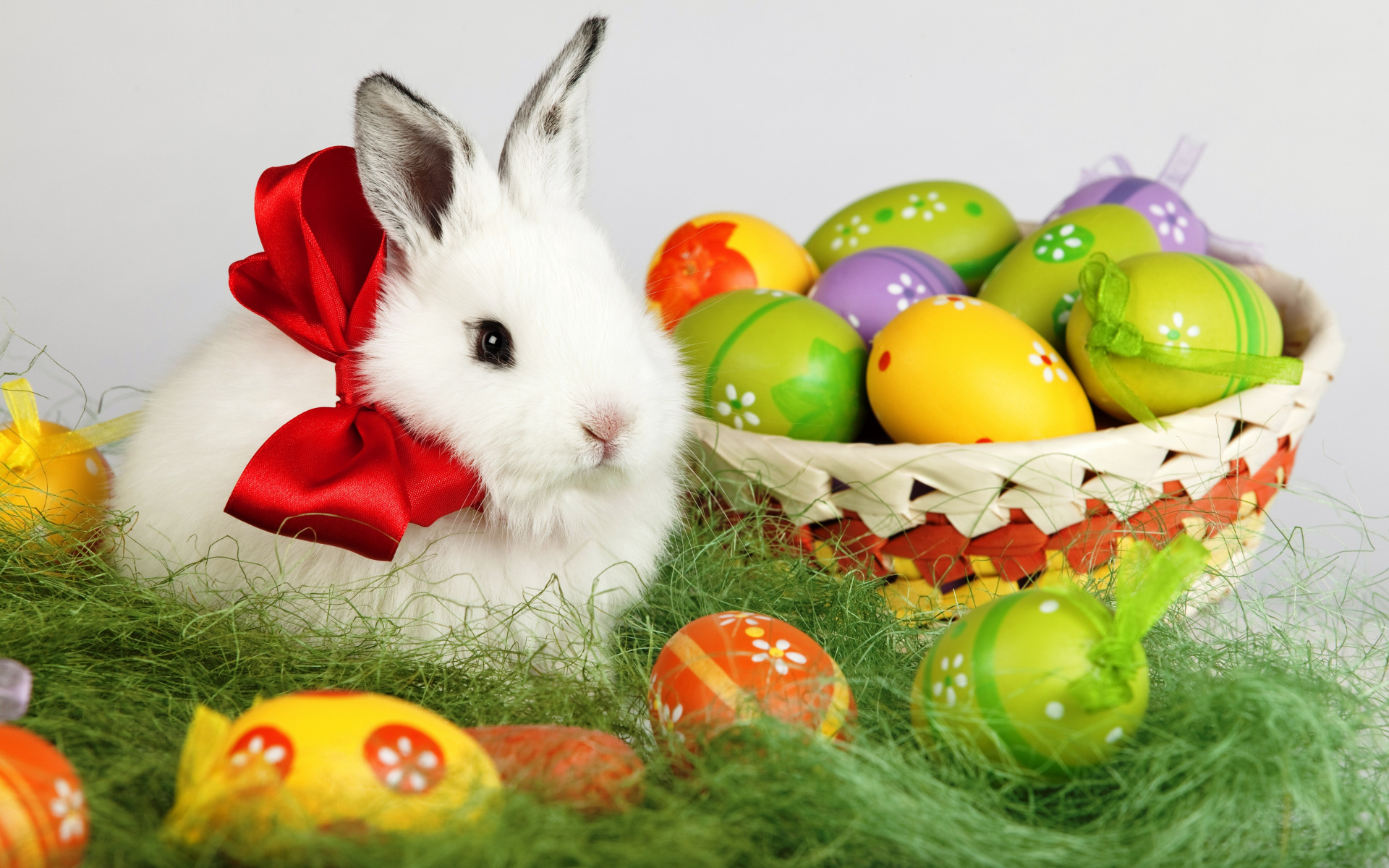 как ми, поздравление кролика с пасхой как правильно
