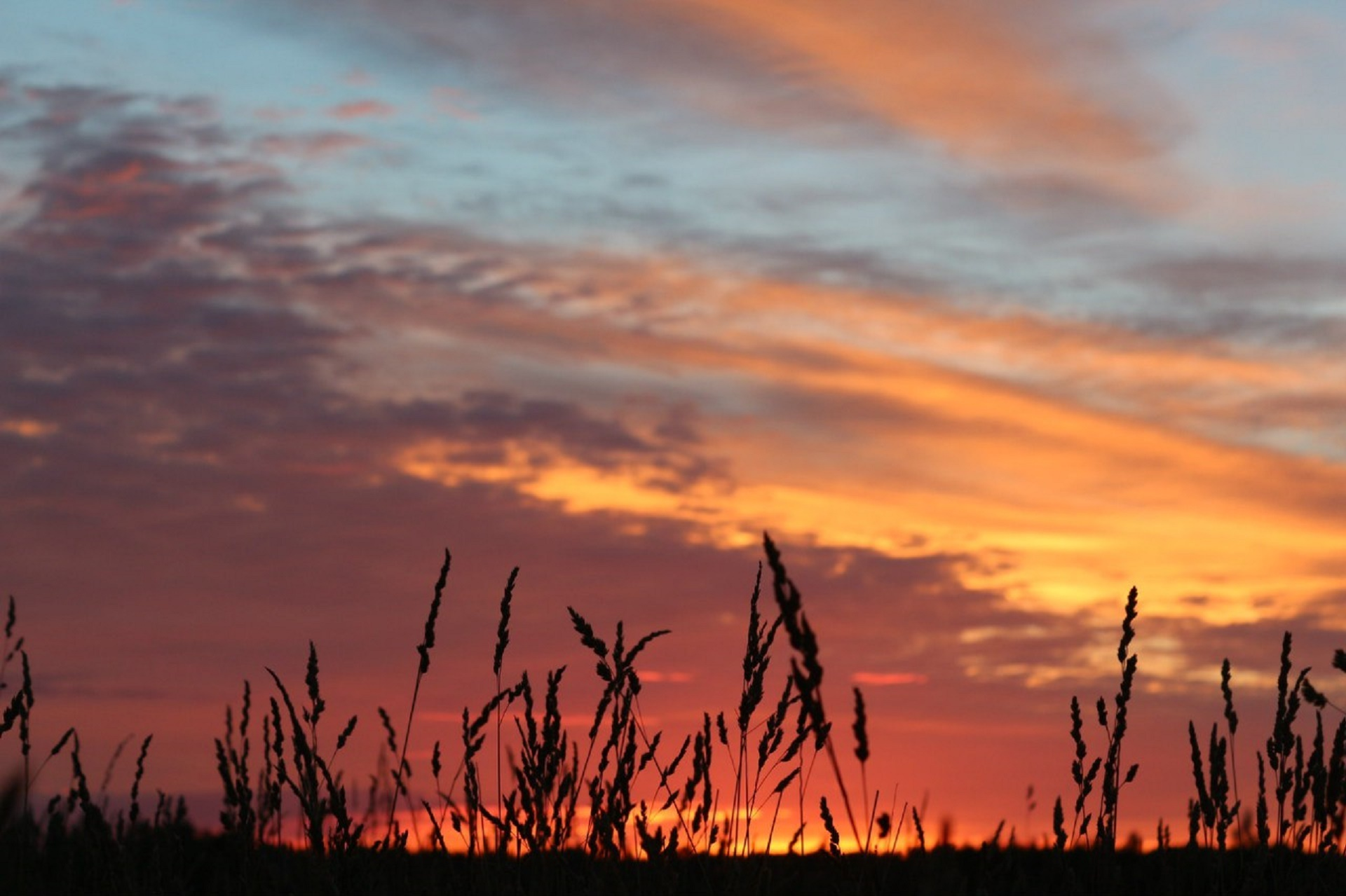 закат поле джипы небо  № 3800530 загрузить