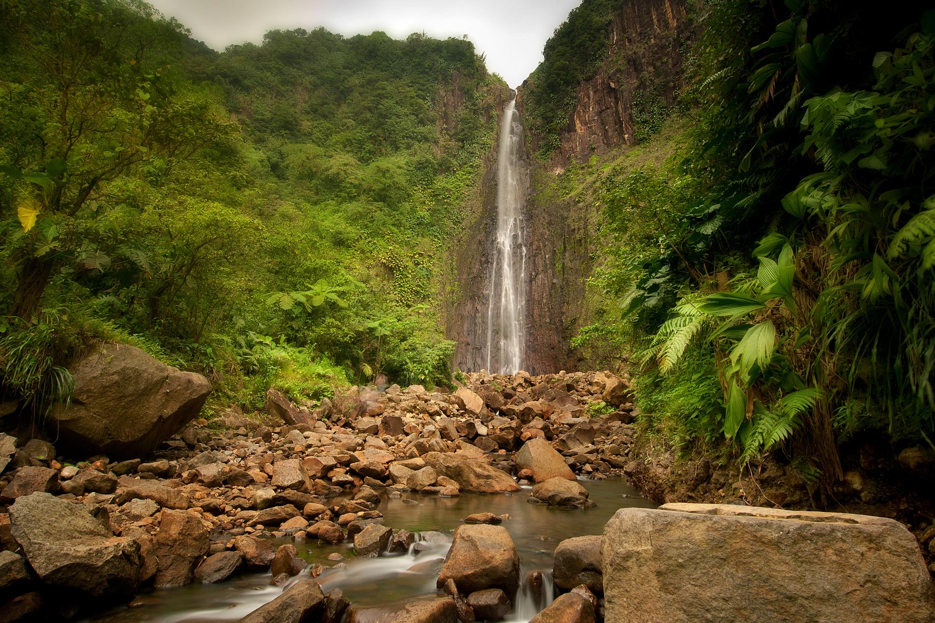 водопад среди деревьев  № 373611 без смс