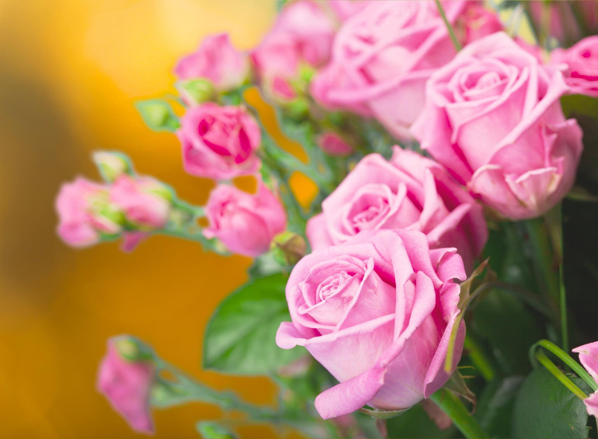 Картинки с букетом желто красными розами если