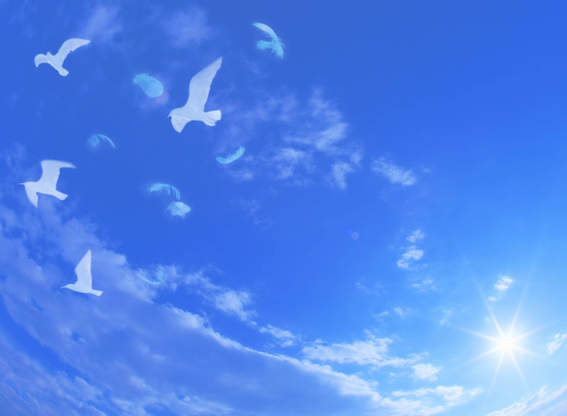 Открытки с небом, месяца знакомства