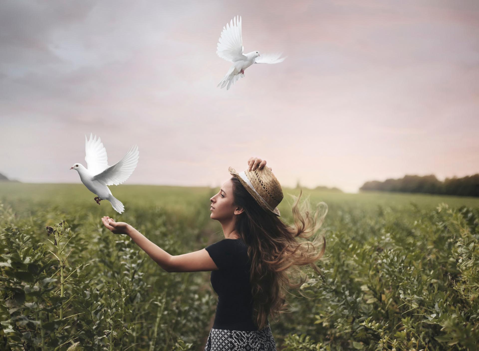 Картинки свобода души птица