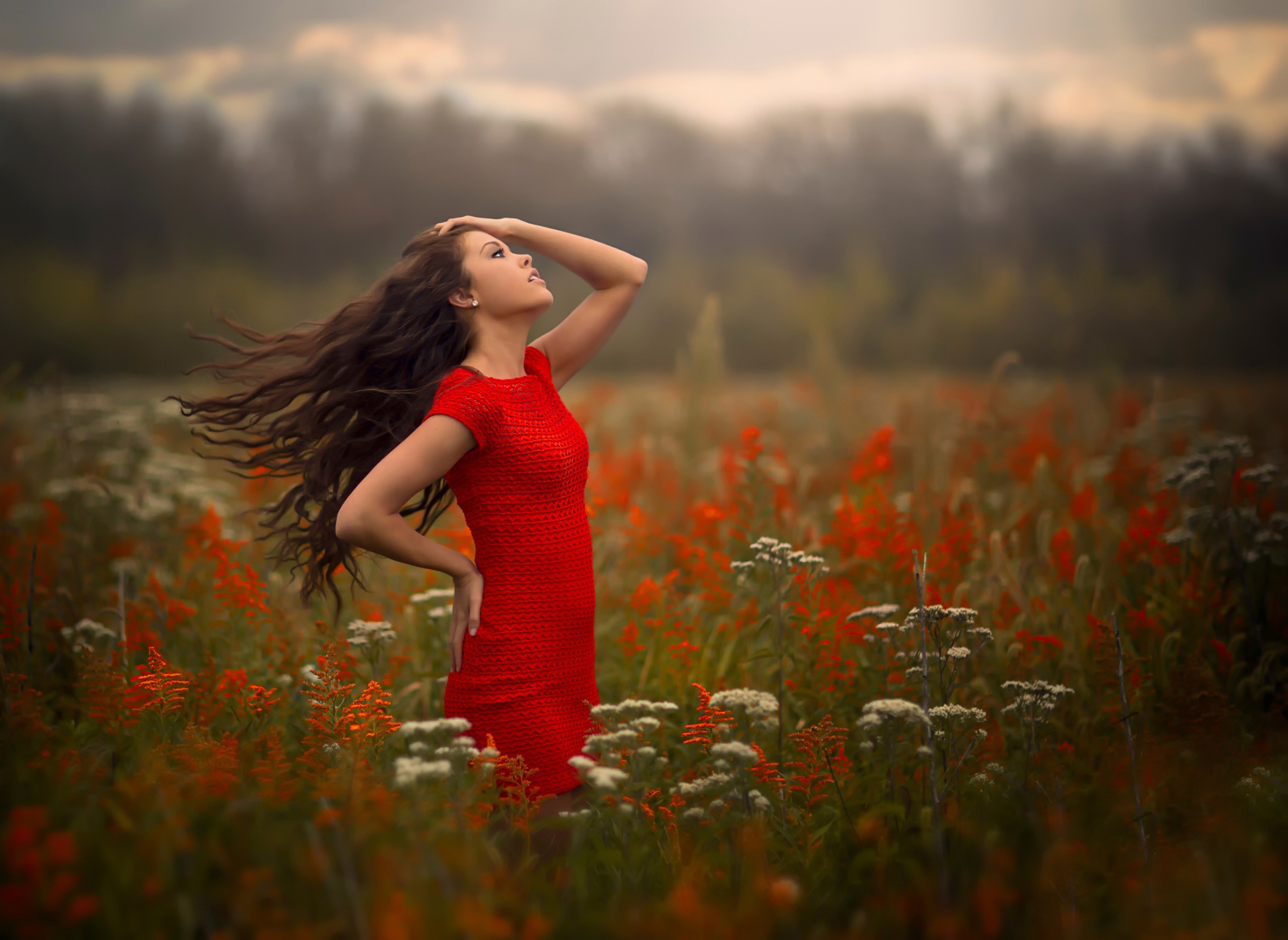 Фото девушка в поле ветер