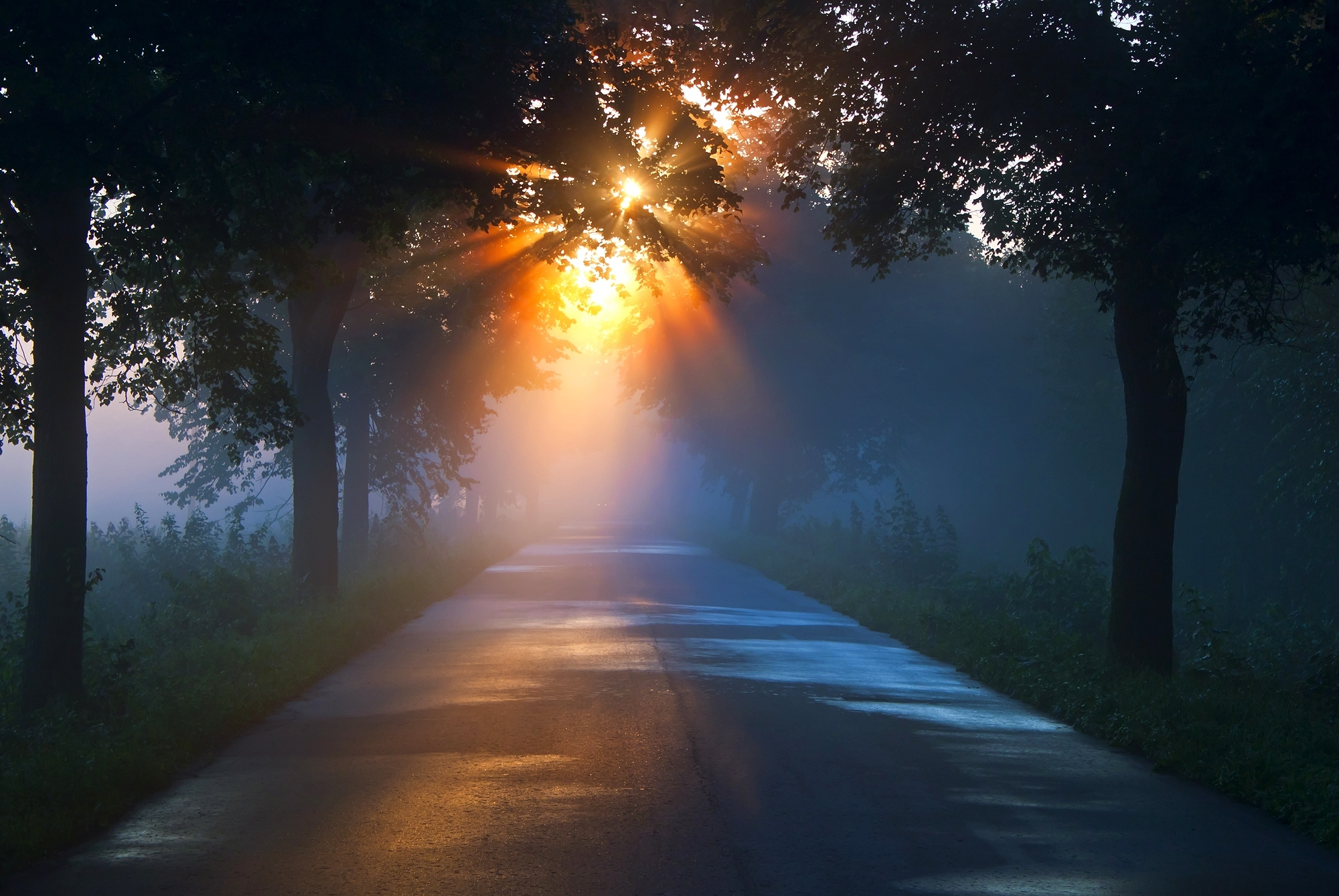 свет для фотографии вечером любую фотографию