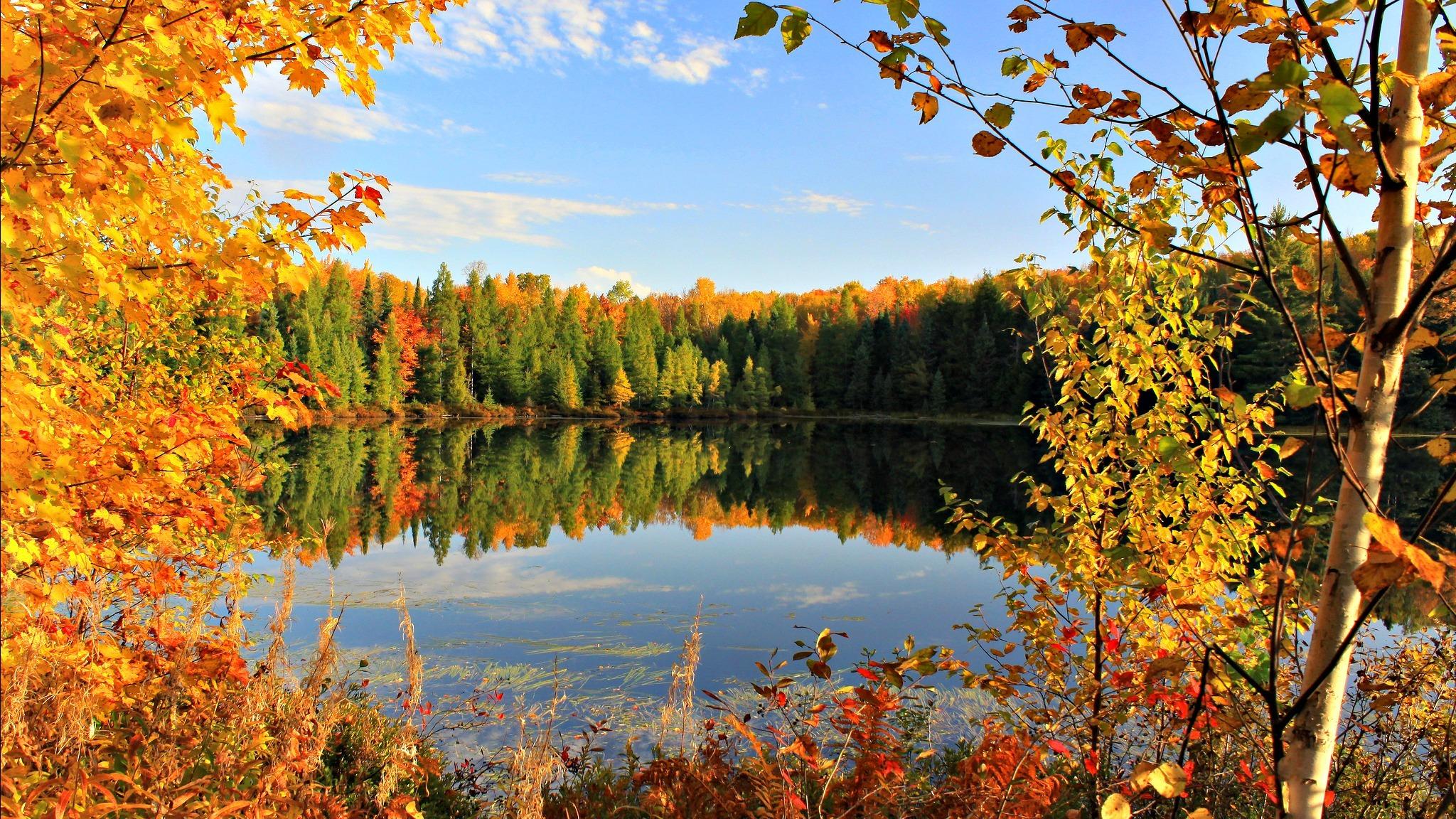 осень озеро природа облака деревья  № 2491528 загрузить