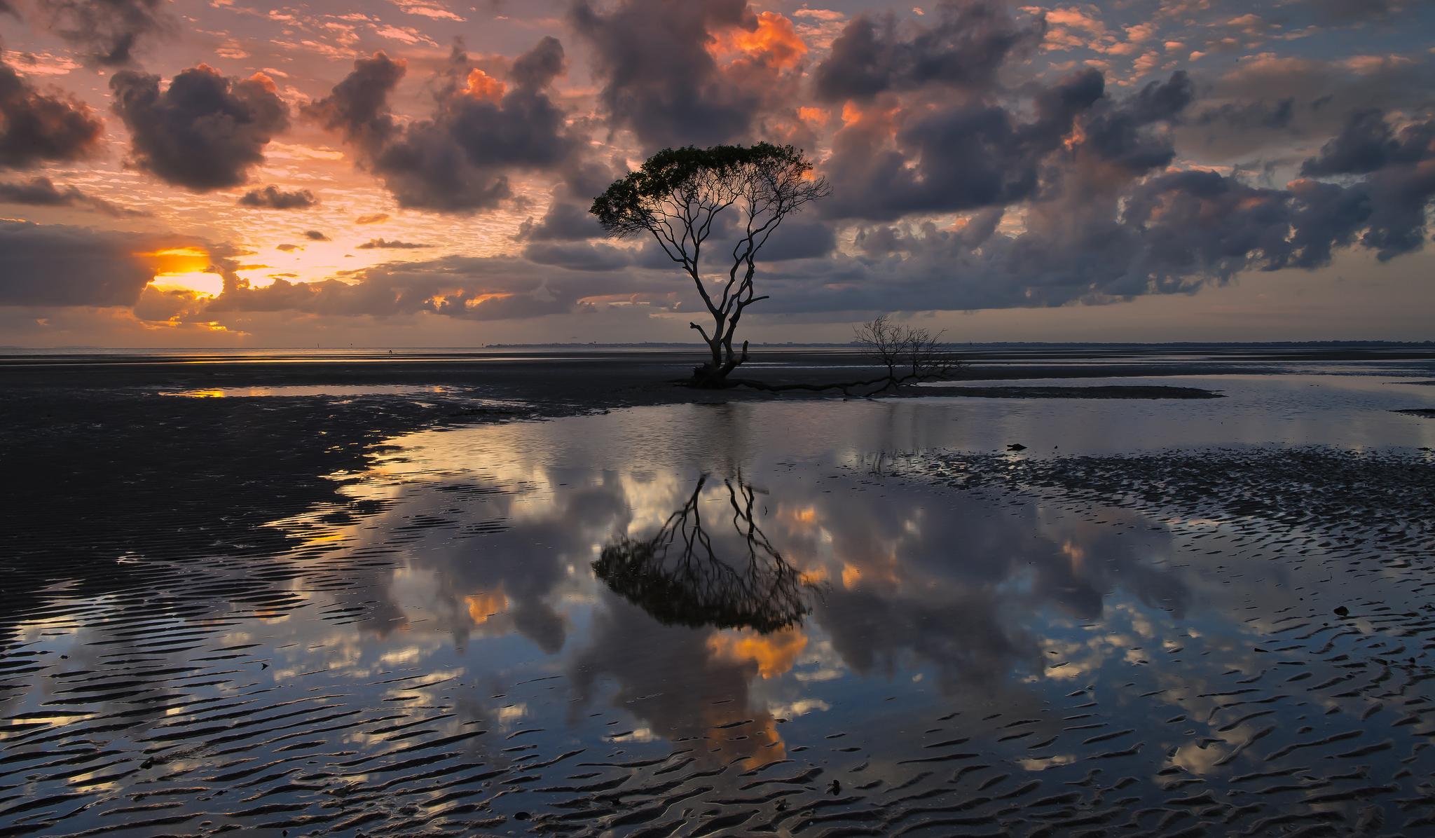 небо, вода, деревья  № 2487070 без смс