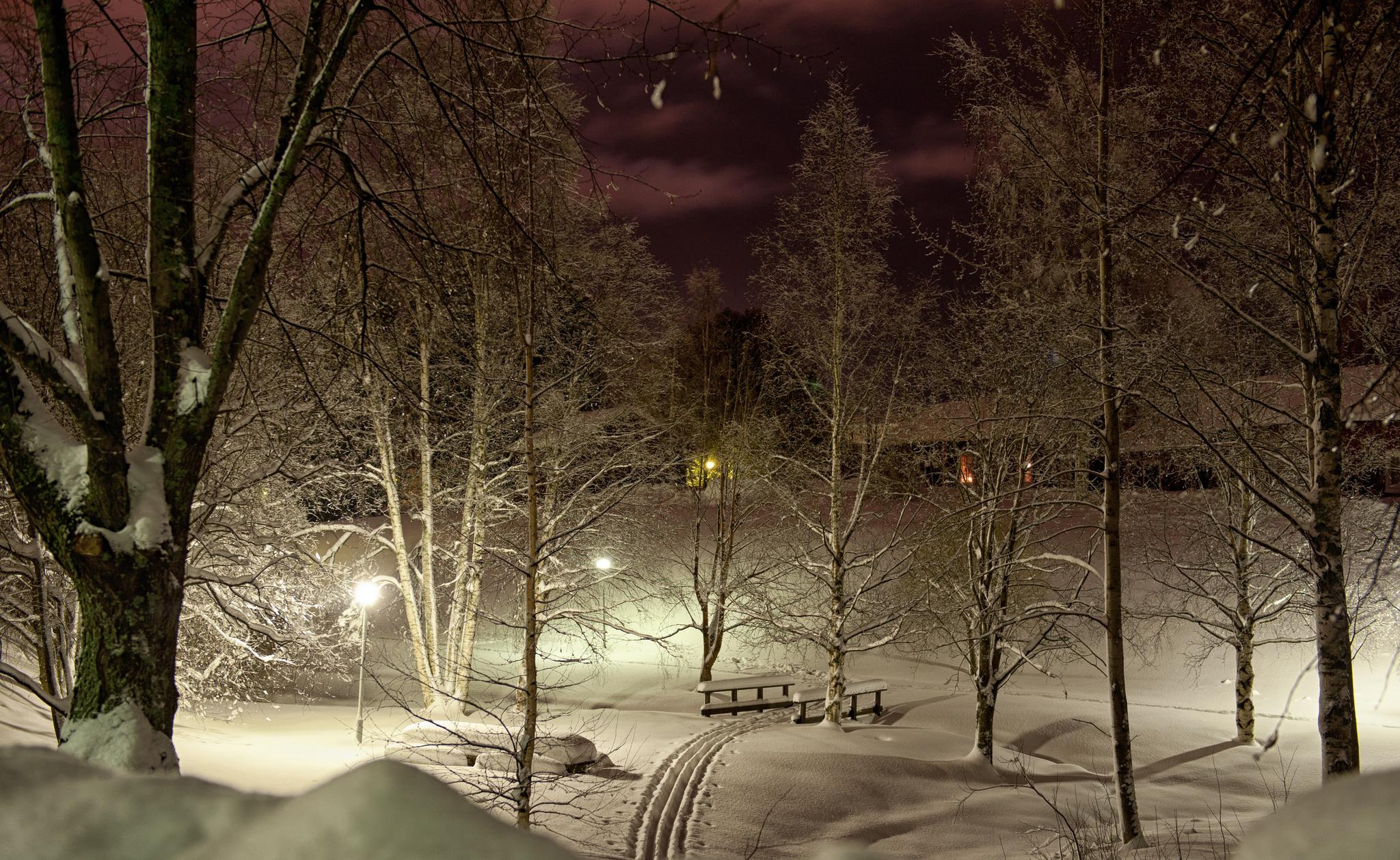 красивые картинки ночь зима снег верим