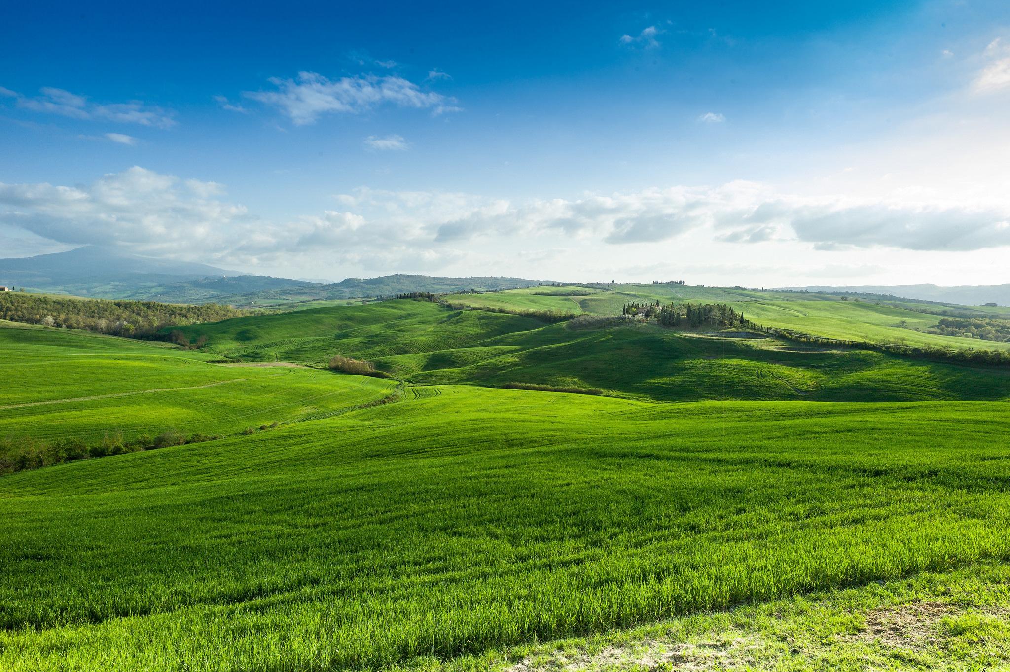 Зеленое поле возле горы  № 1077777 без смс