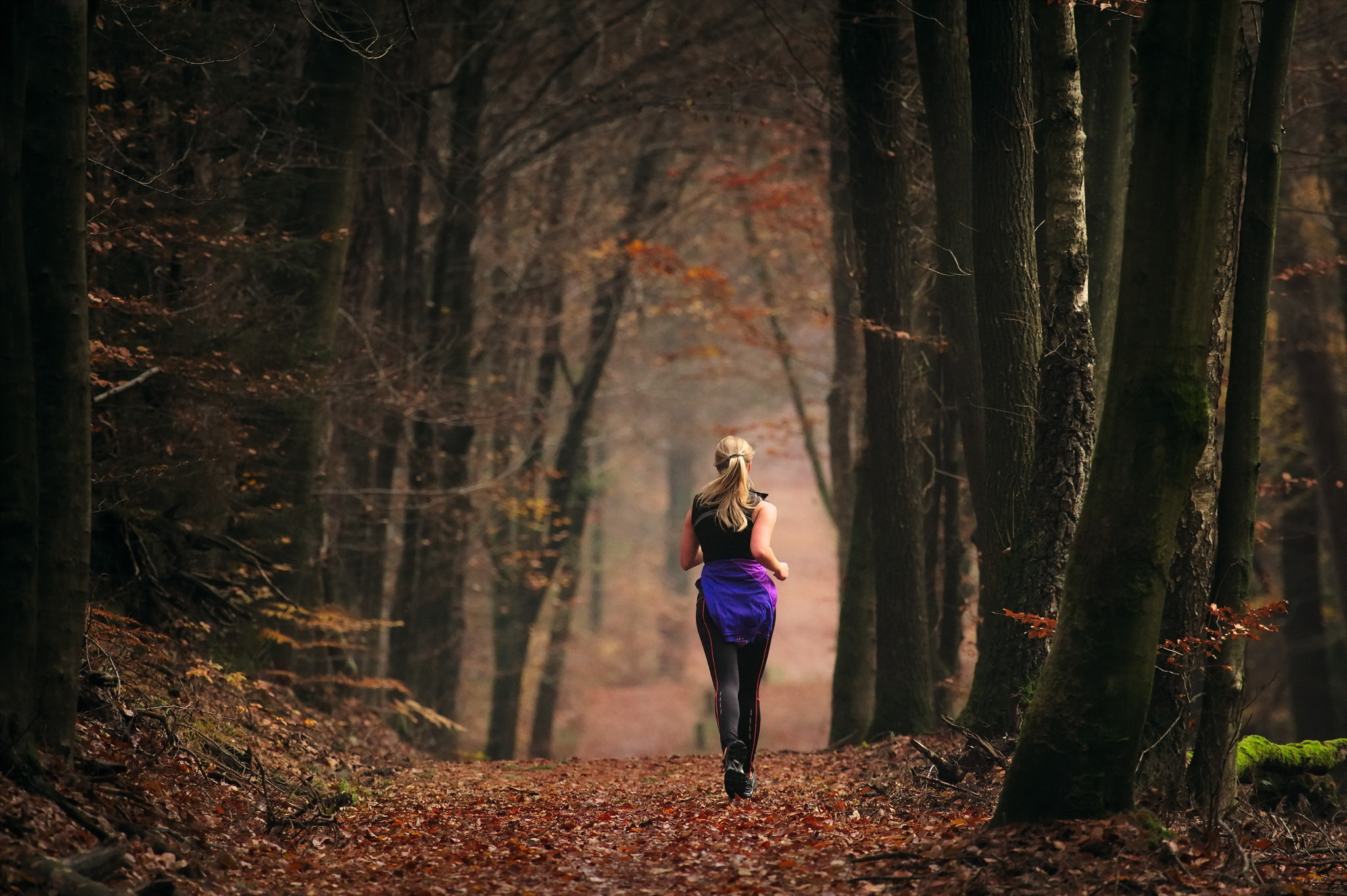 Девушка в лесу на листьях  № 2707742 без смс