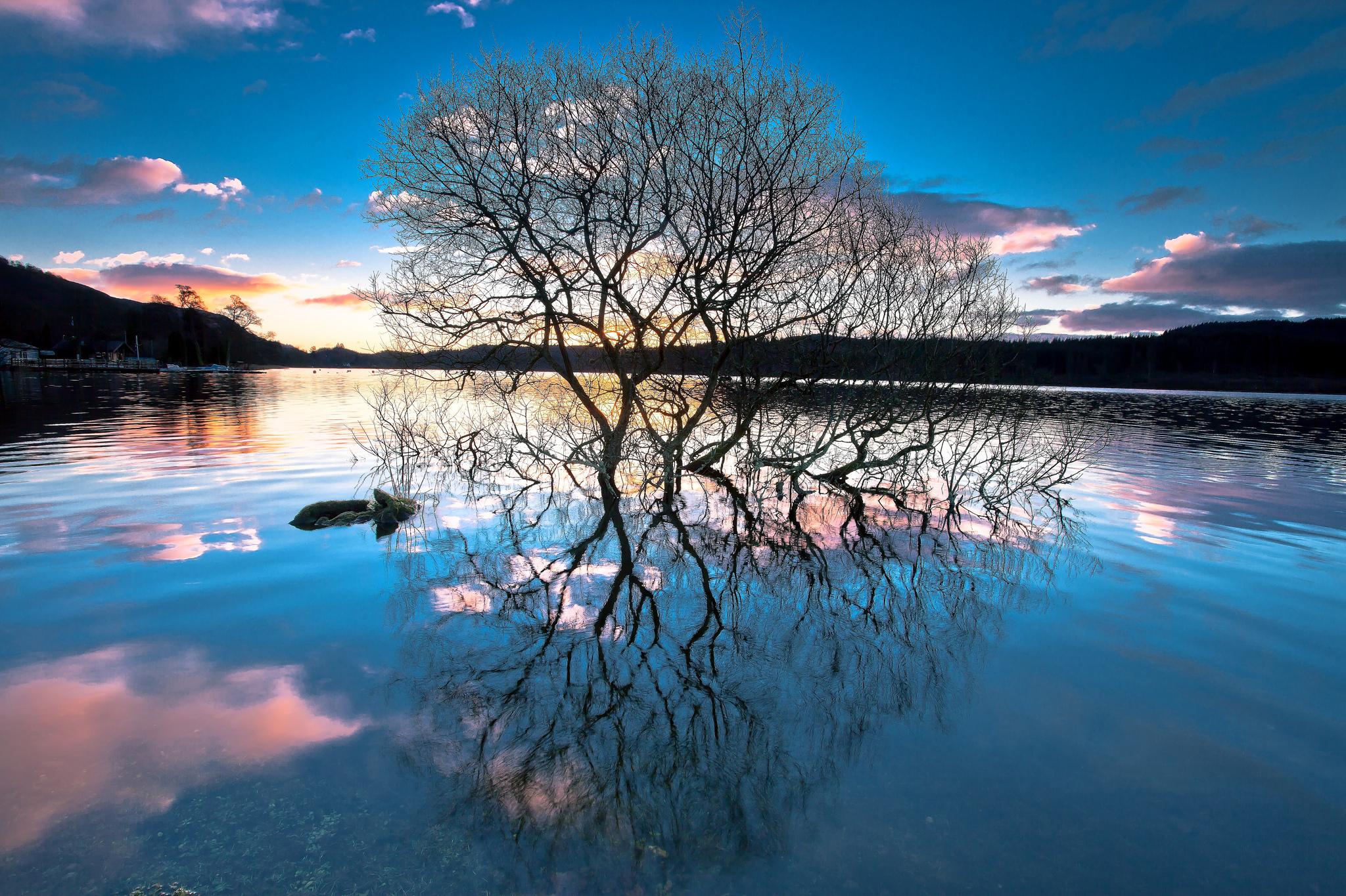 озеро в лесу на закате  № 380252 бесплатно