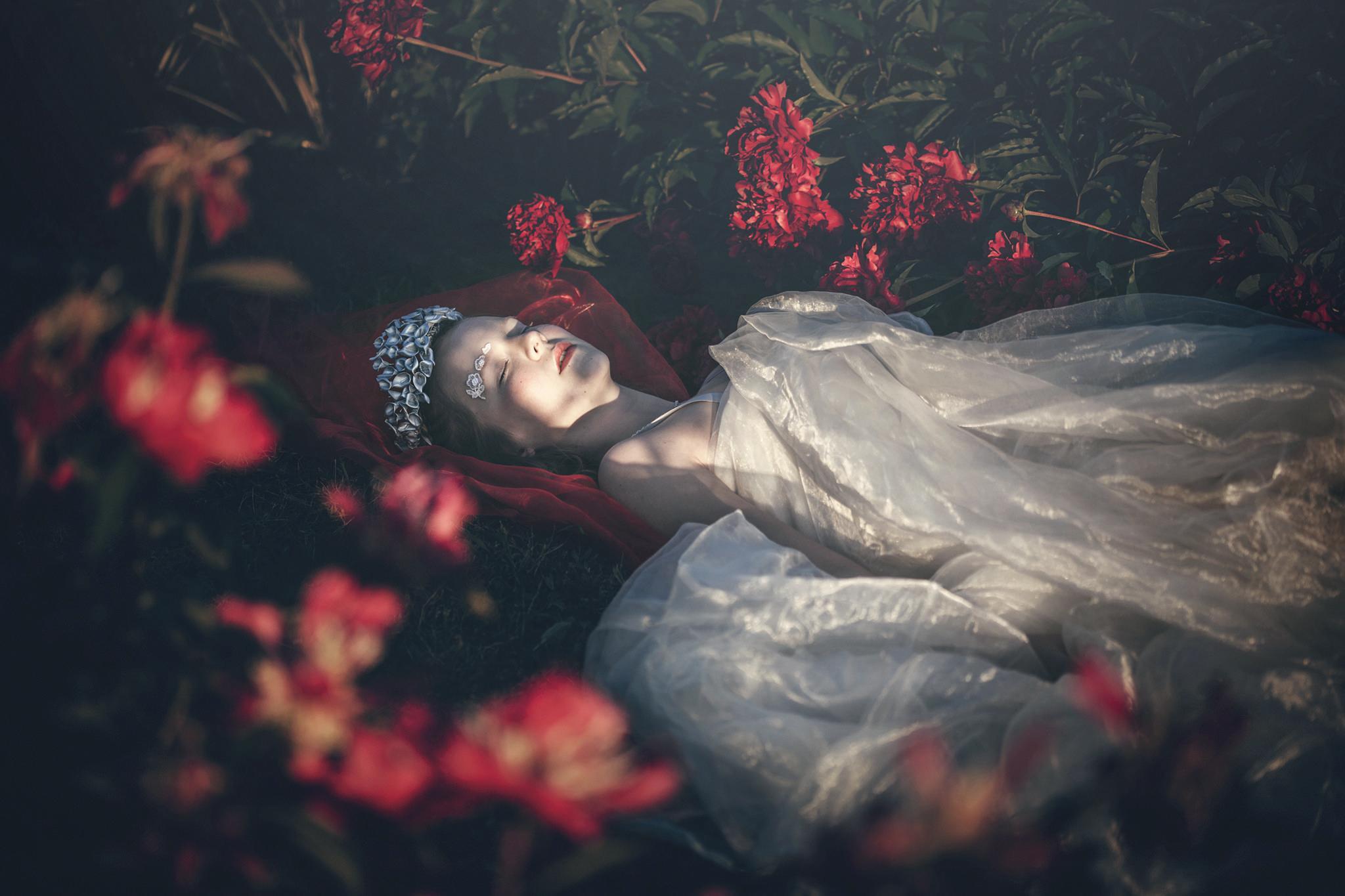 Сон картинки с розами