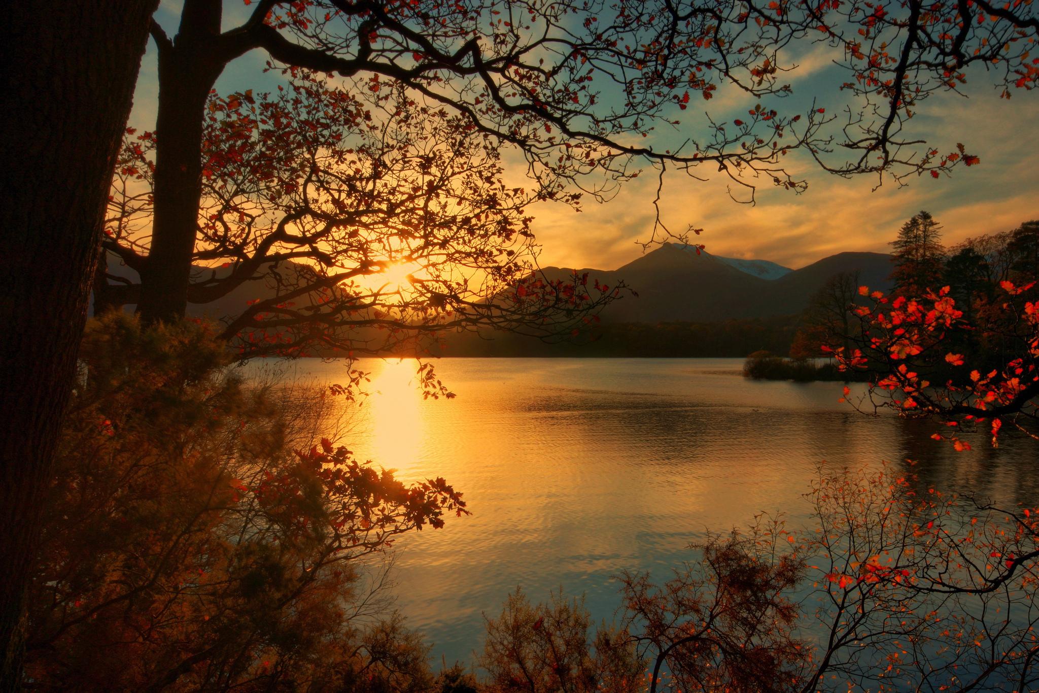 закат озеро осень трава  № 1020883 без смс