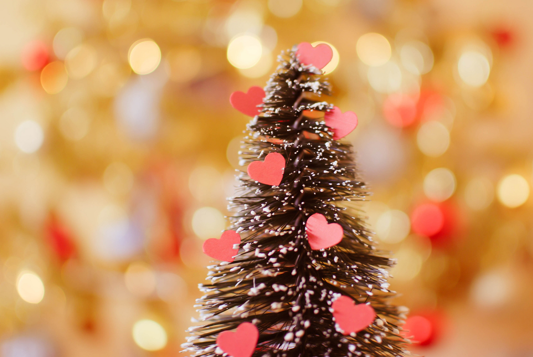 метели новый год фото на рабочий стол сердечками стоп-кадры одних