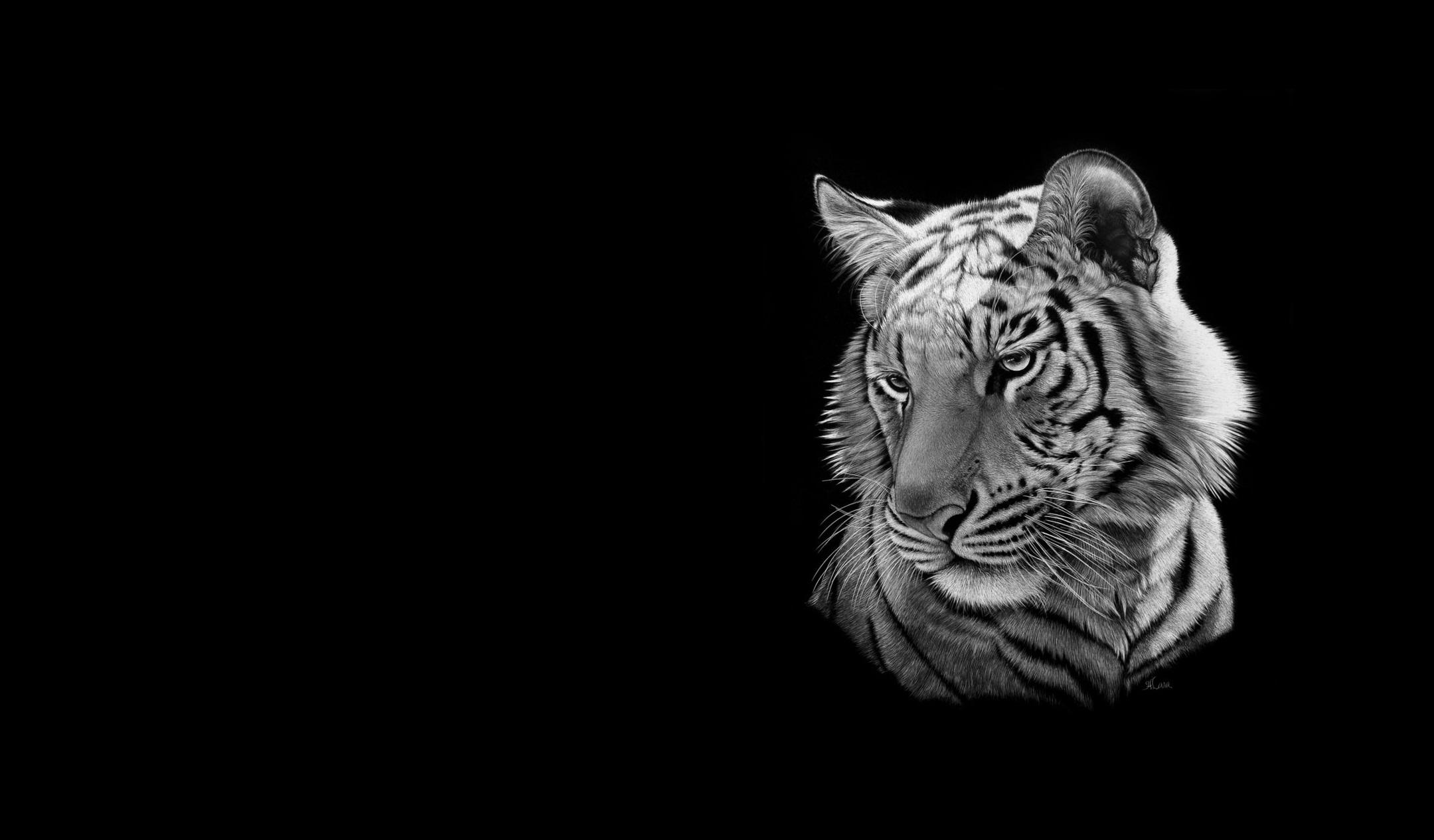 собрали картинки на телефон черно белые тигр годы советской