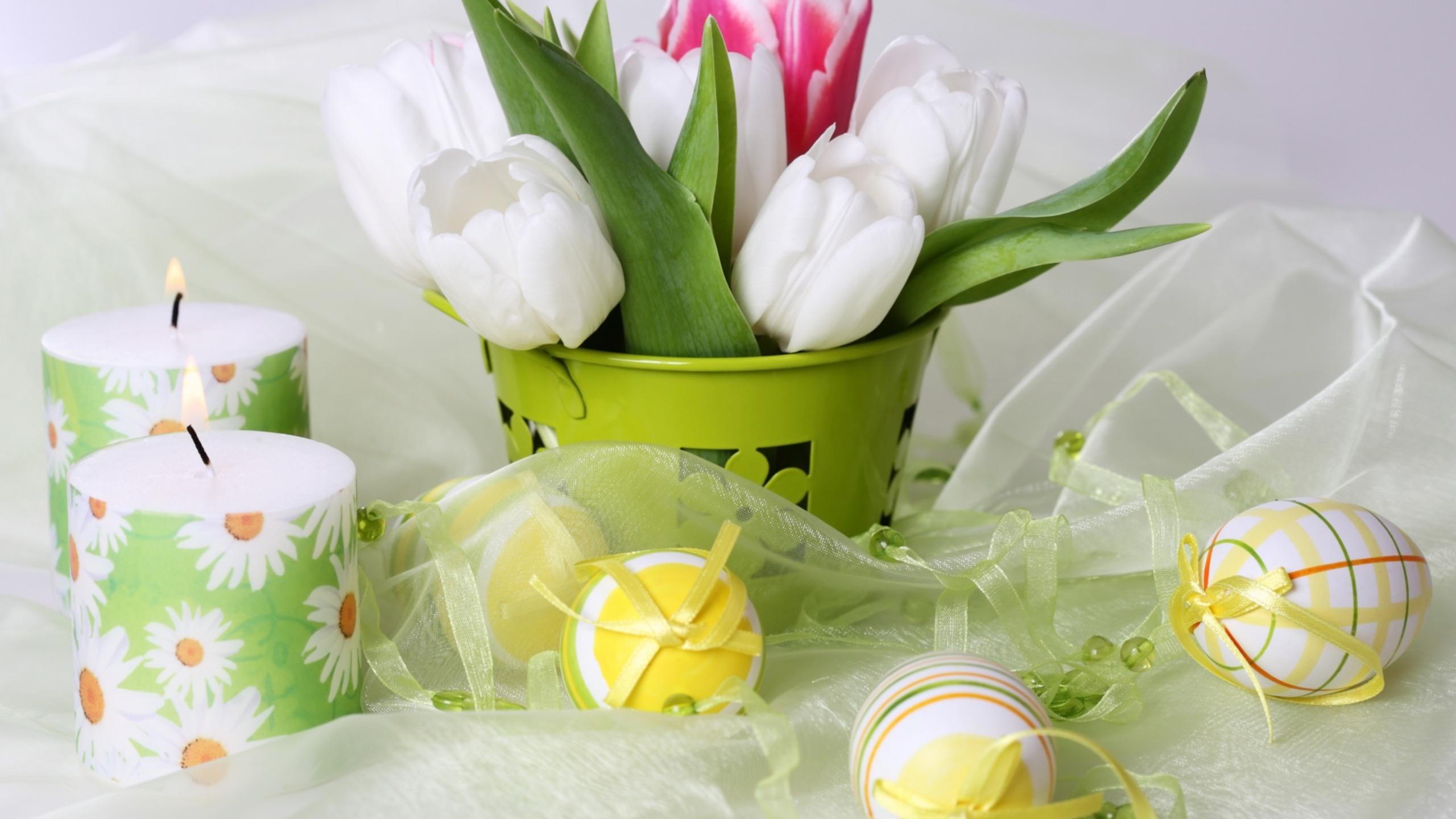 цветы свечи  № 1504394 без смс