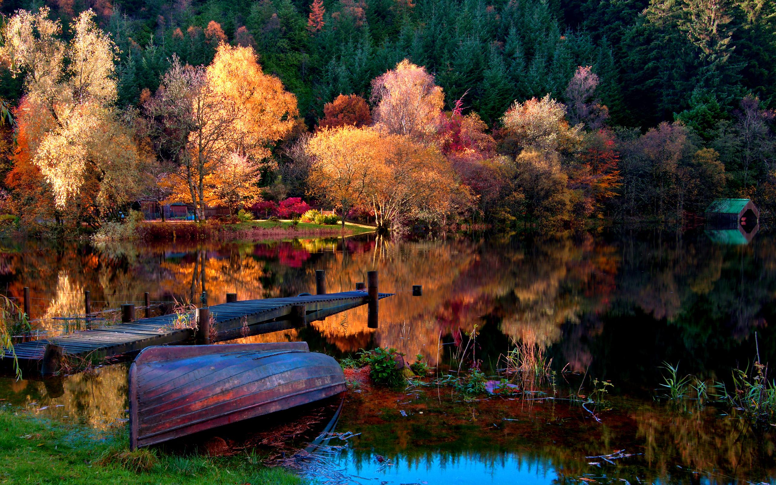 вода озеро осень water the lake autumn  № 1155972 без смс