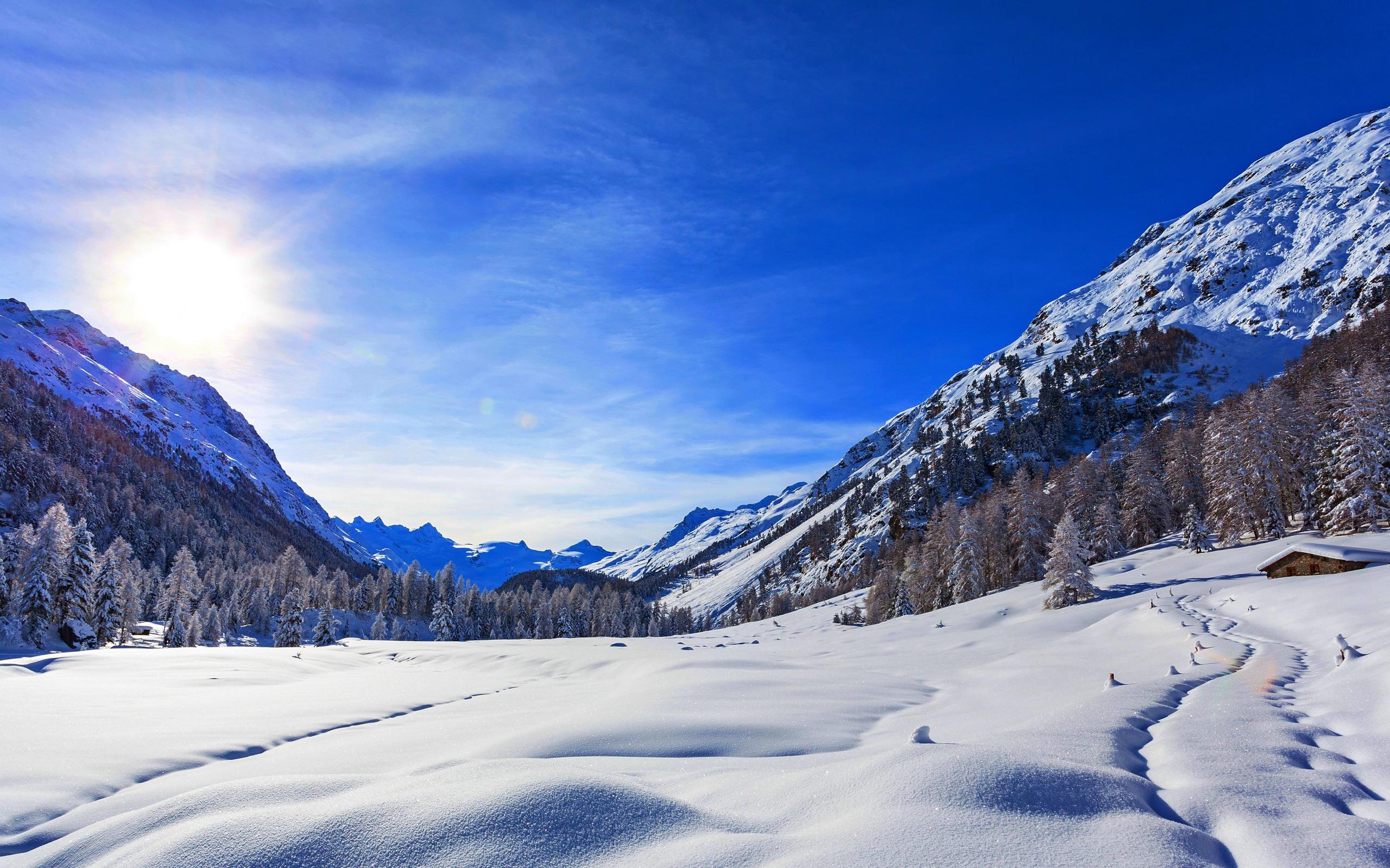 природа скалы деревья горы снег зима nature rock trees mountains snow winter  № 455806 без смс