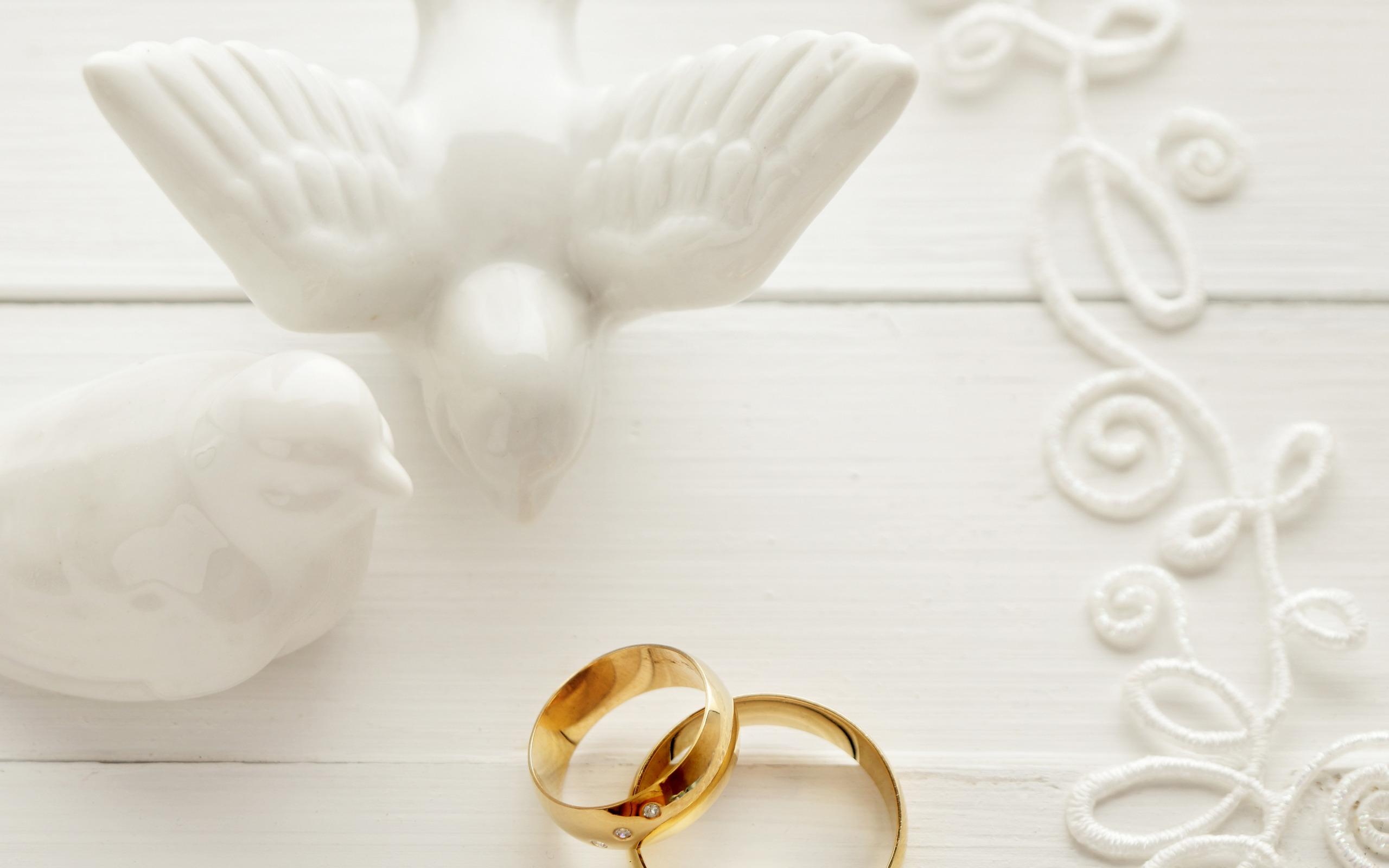 Картинки свадебные кольца и голуби в бело золотом цвете, год