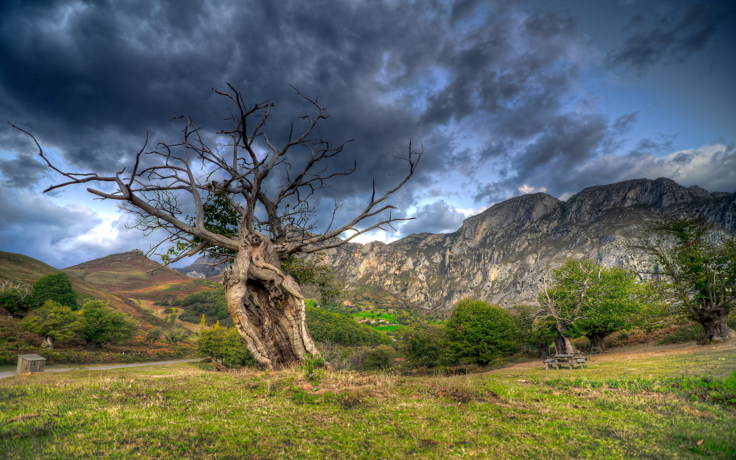 Скалы горы облака трава деревья  № 2863413  скачать