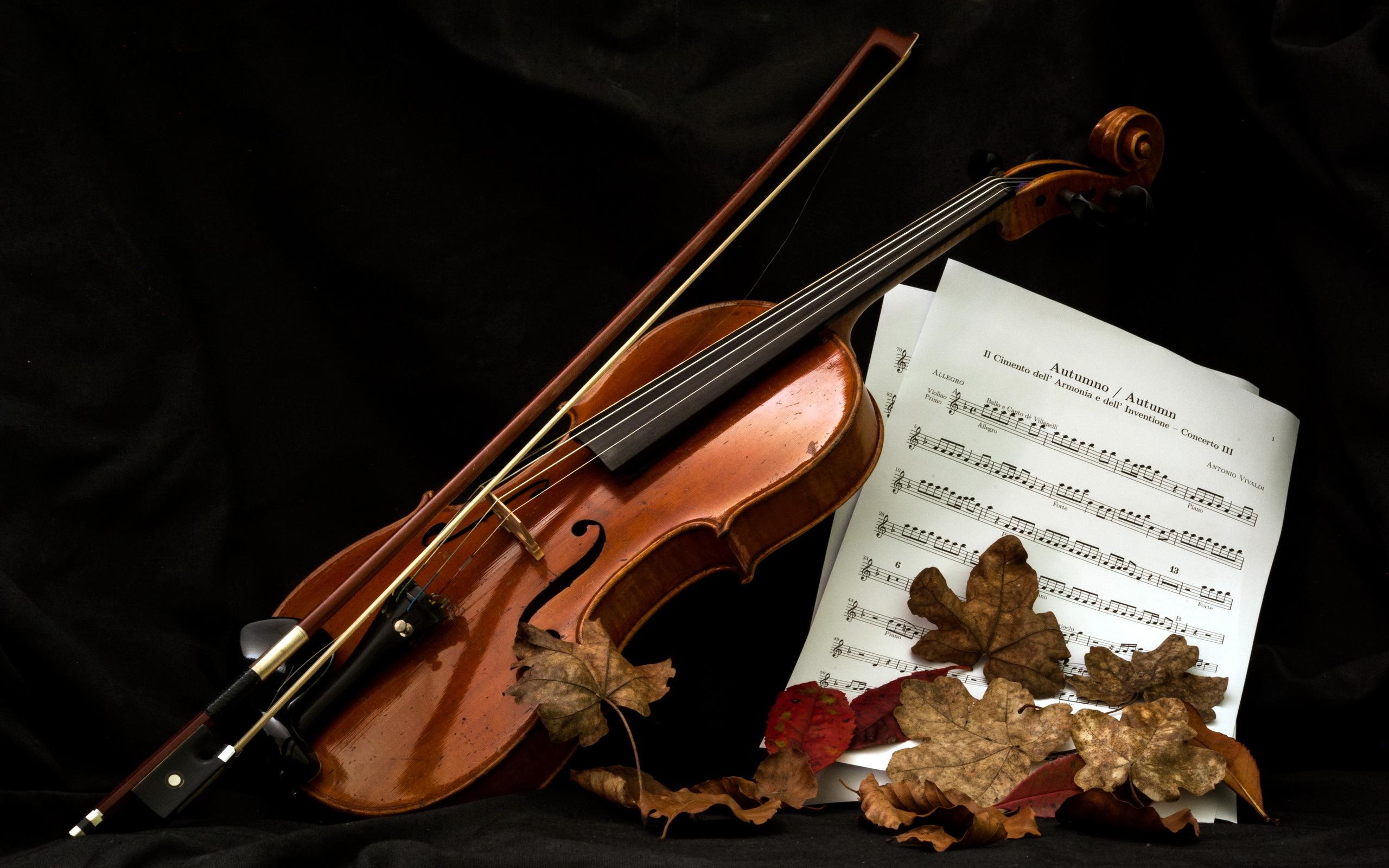 скрипка, ноты, торт  № 1908267 без смс