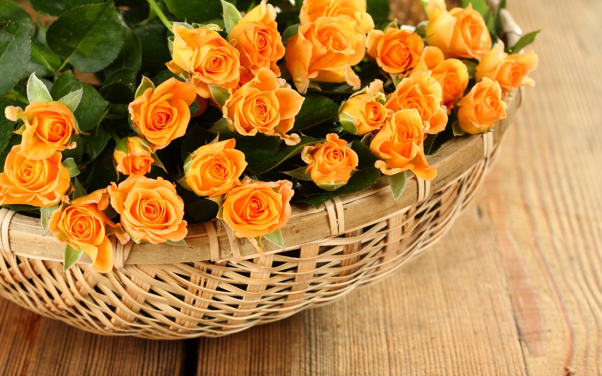 Днем, открытки с днем рождения цветы оранжевые