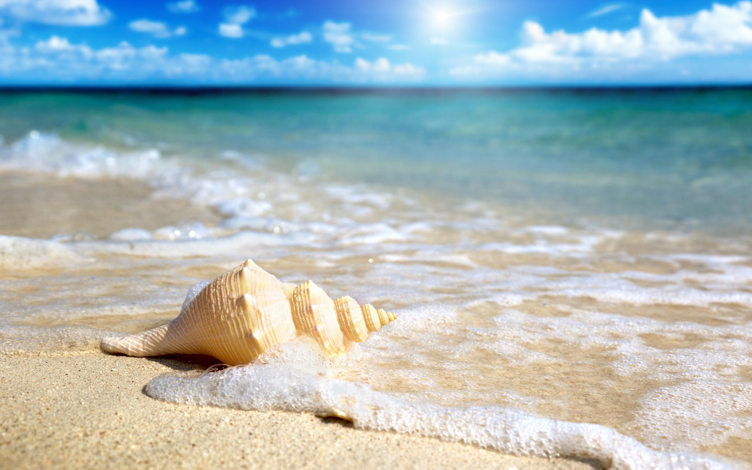 фото море солнце песок более слабы нуждаются