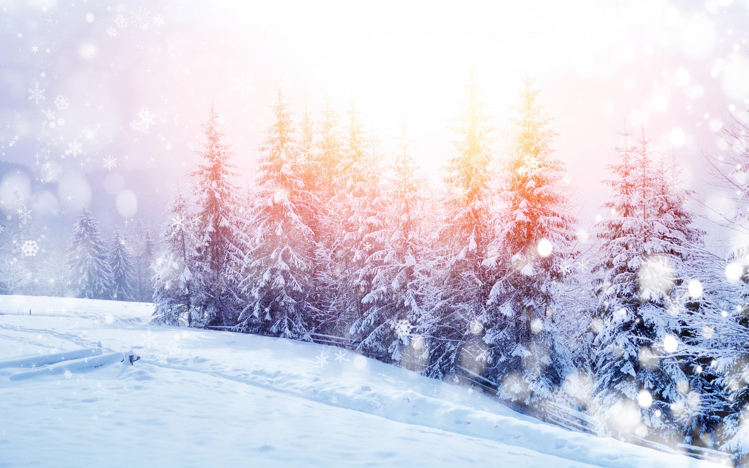 природа снег зима деревья горы  № 2577047 загрузить
