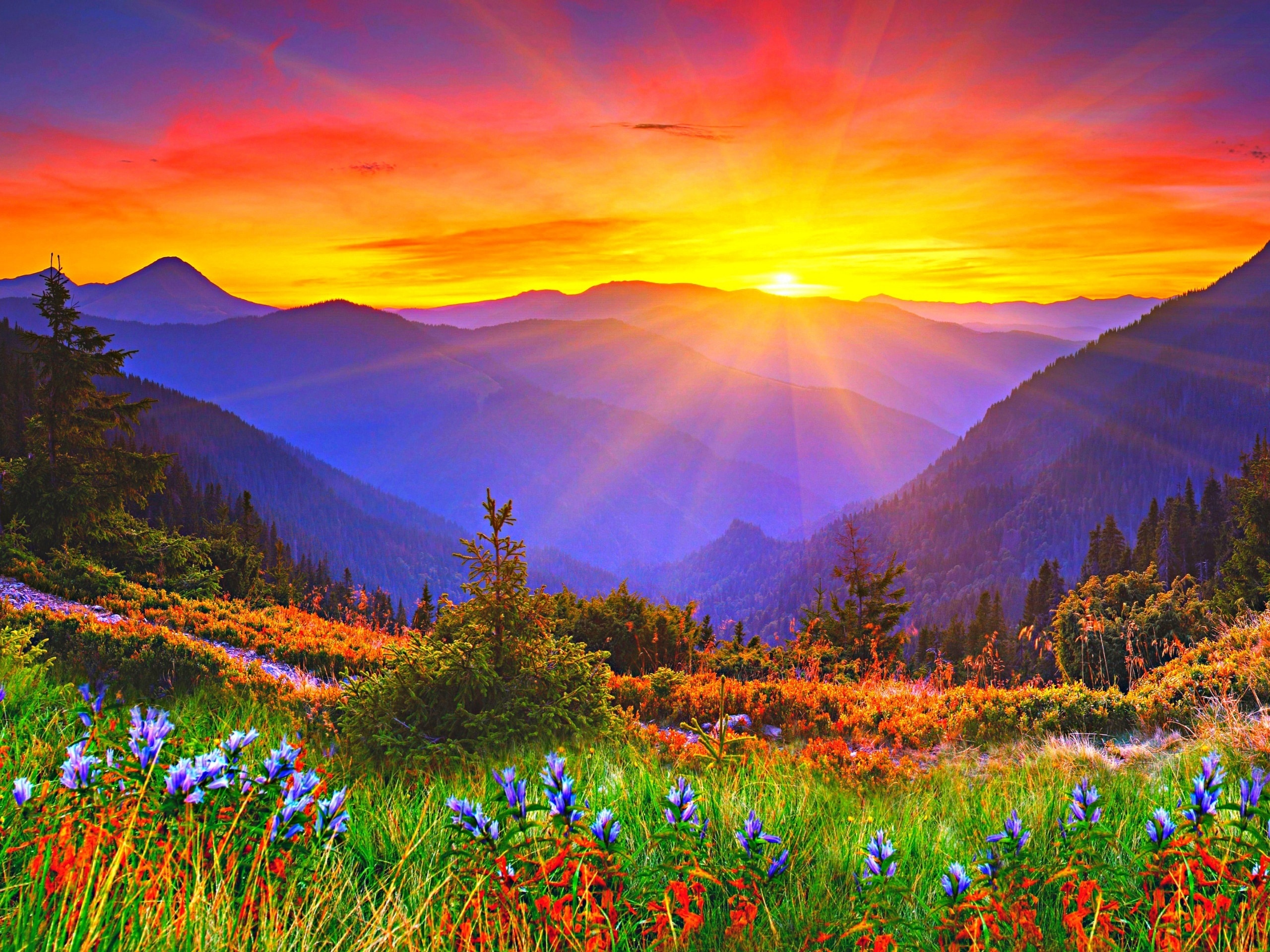 sunrise pictures in the mountains - 1200×675