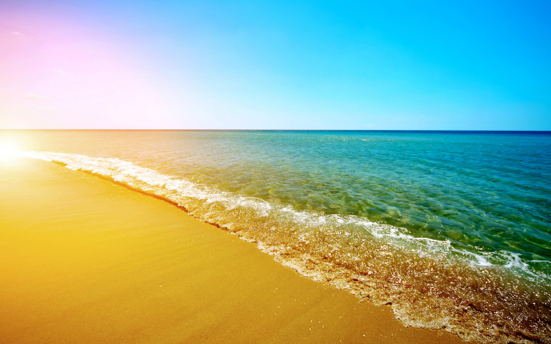 тараканы открытки море пляж солнце весь