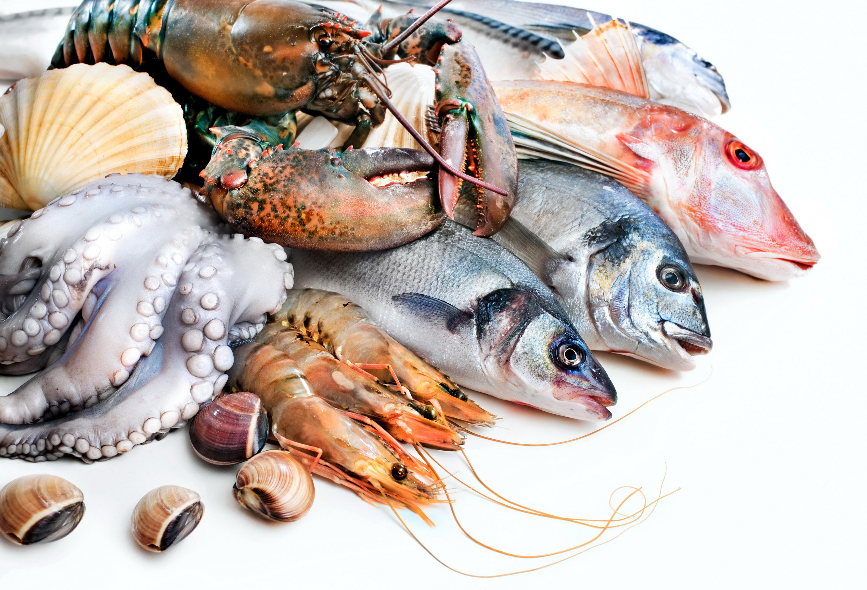 Картинка морепродукты для детей