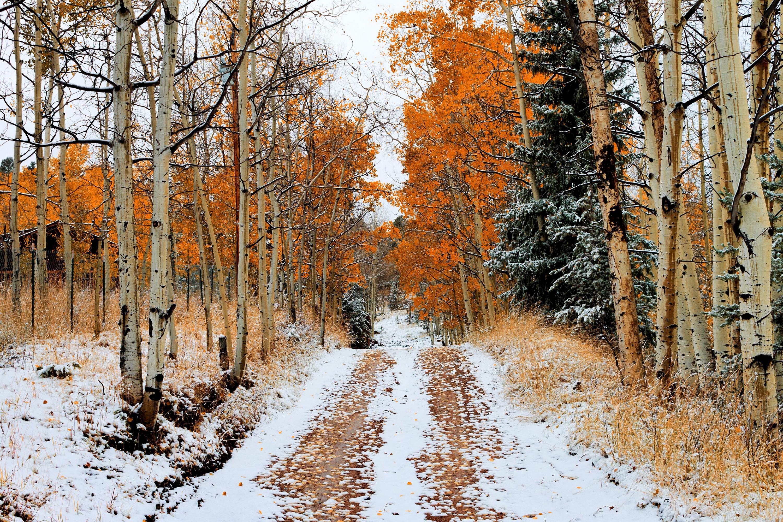 Пенсионного фонда пейзаж осень в снегу выбор пал Испанию-страну,которую