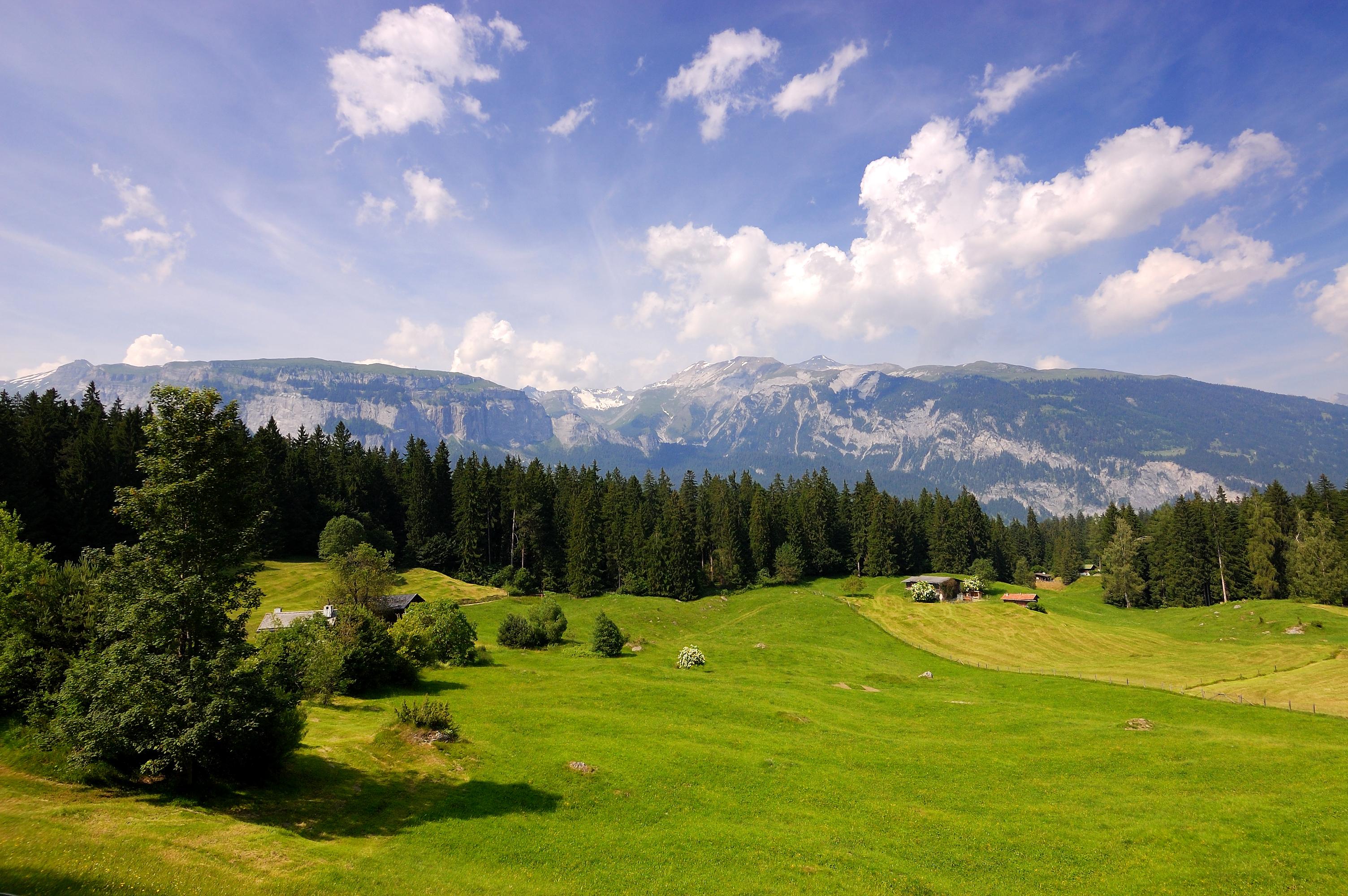 Гора и поля в картинках