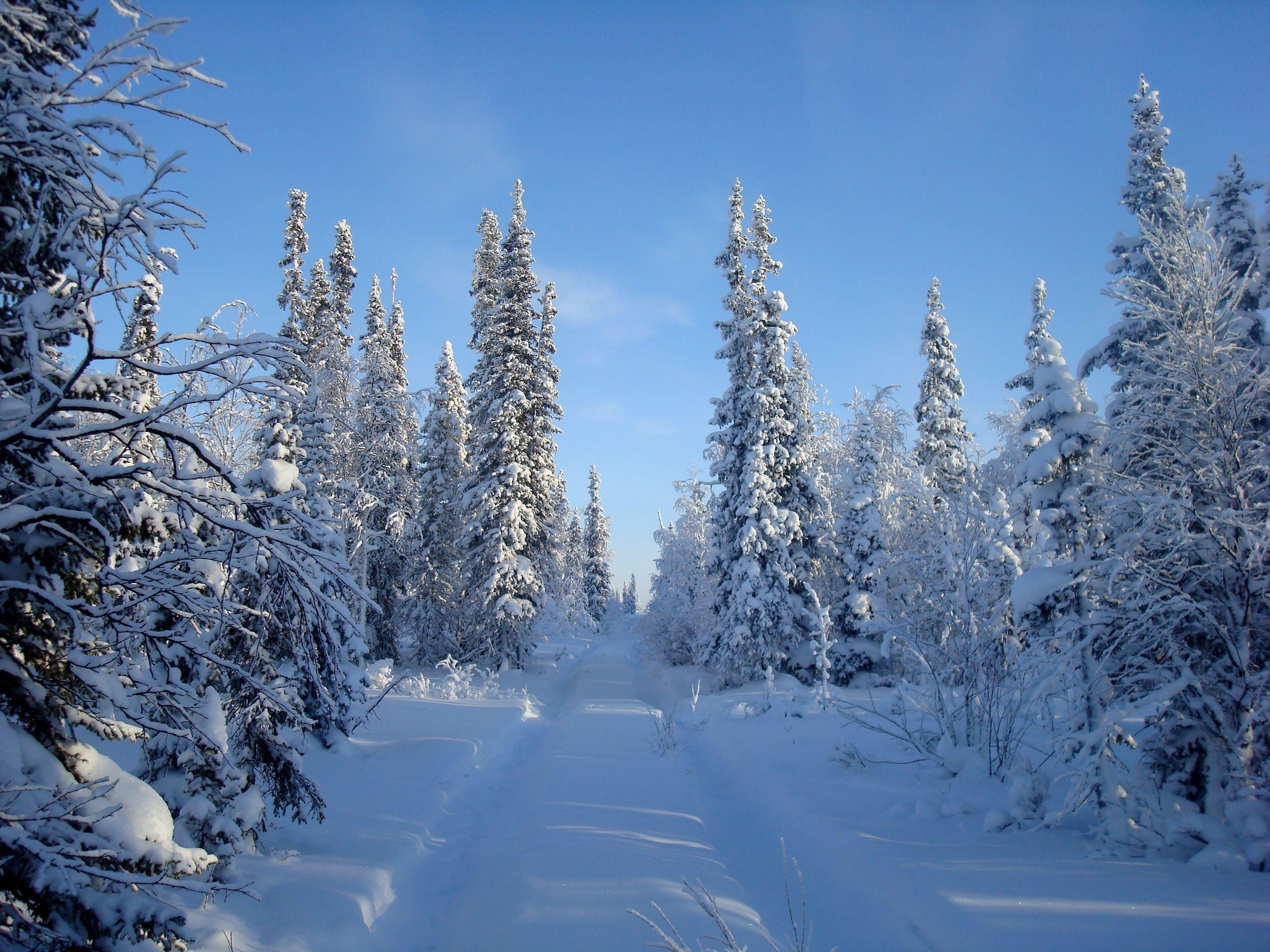 про зиму с картинками шесть стран мире