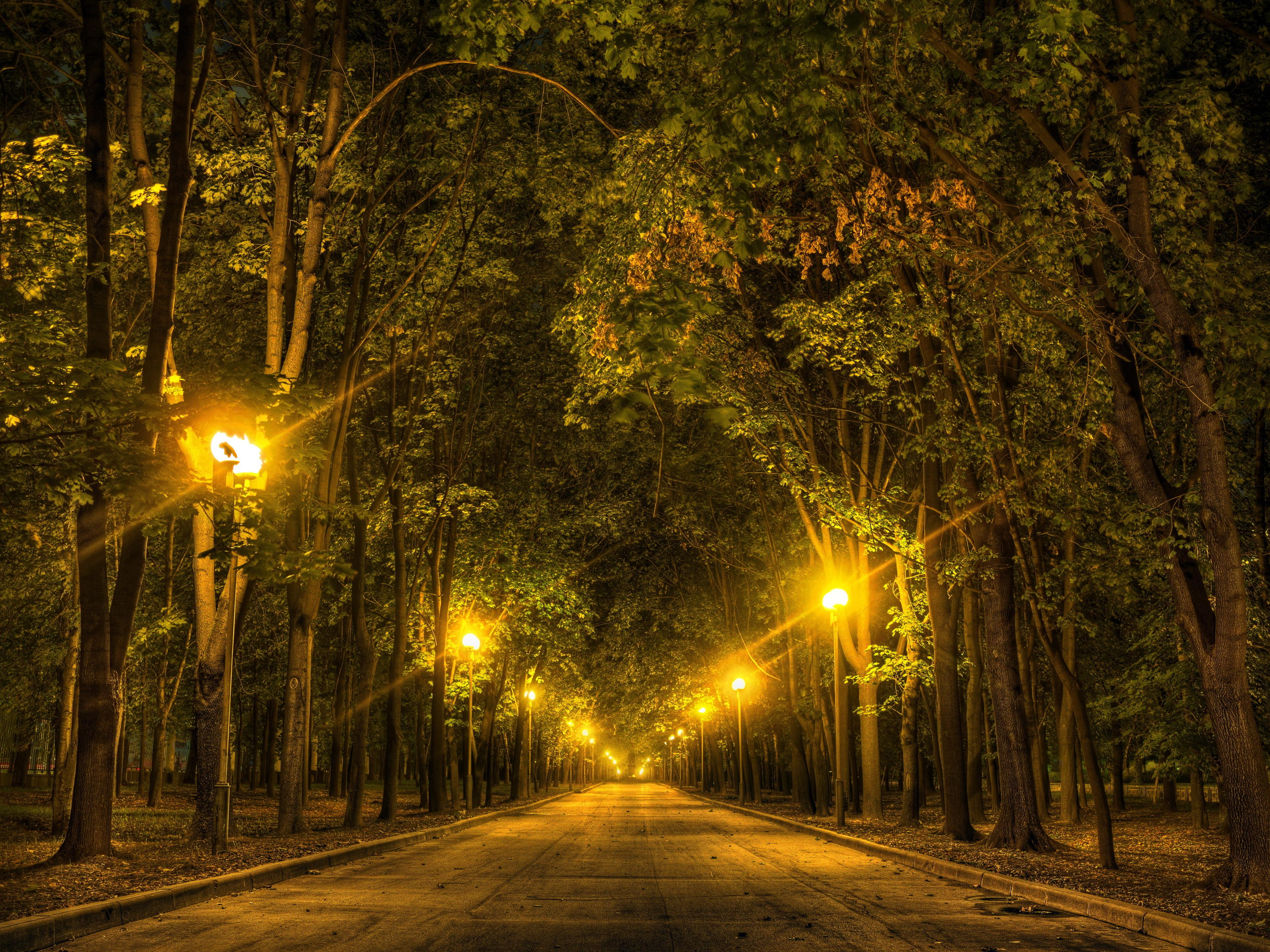 природа фонари  № 375042 бесплатно